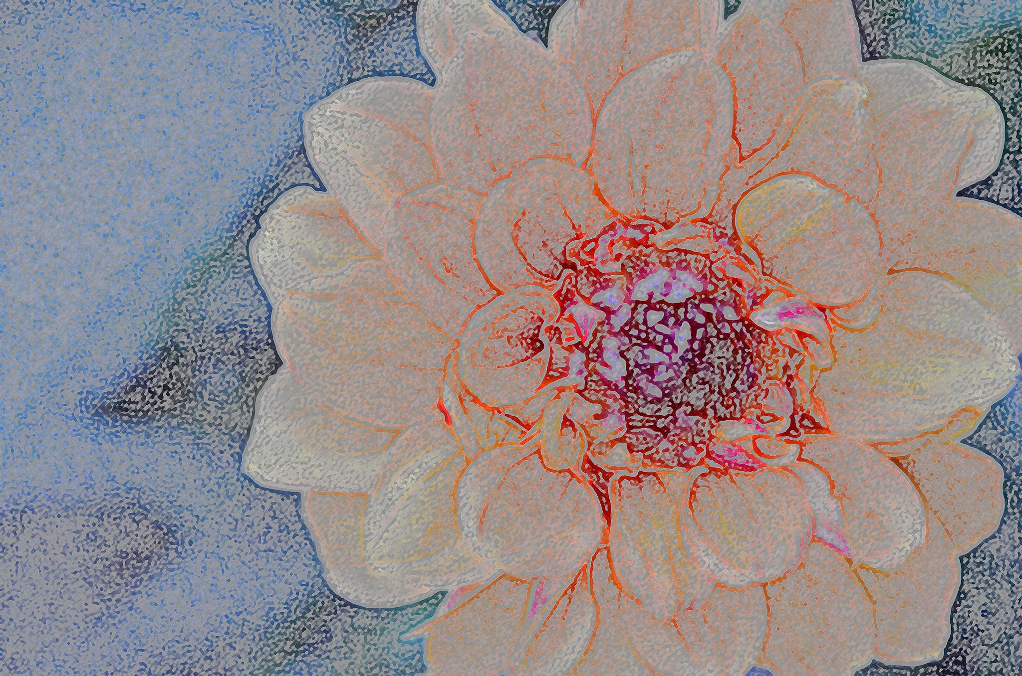 Dahlia Glory by Debby Pueschel