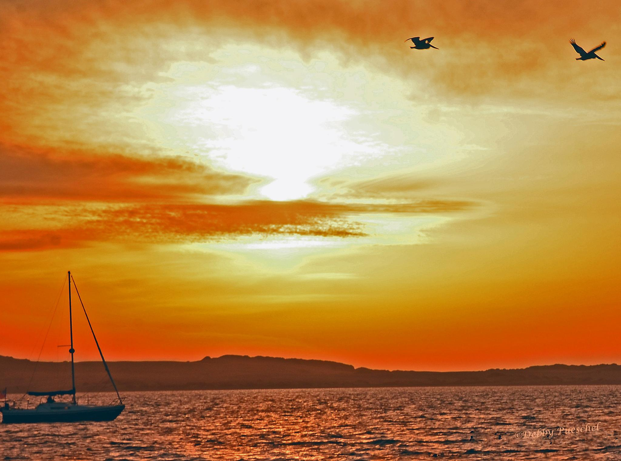Sailing at Sunset by Debby Pueschel