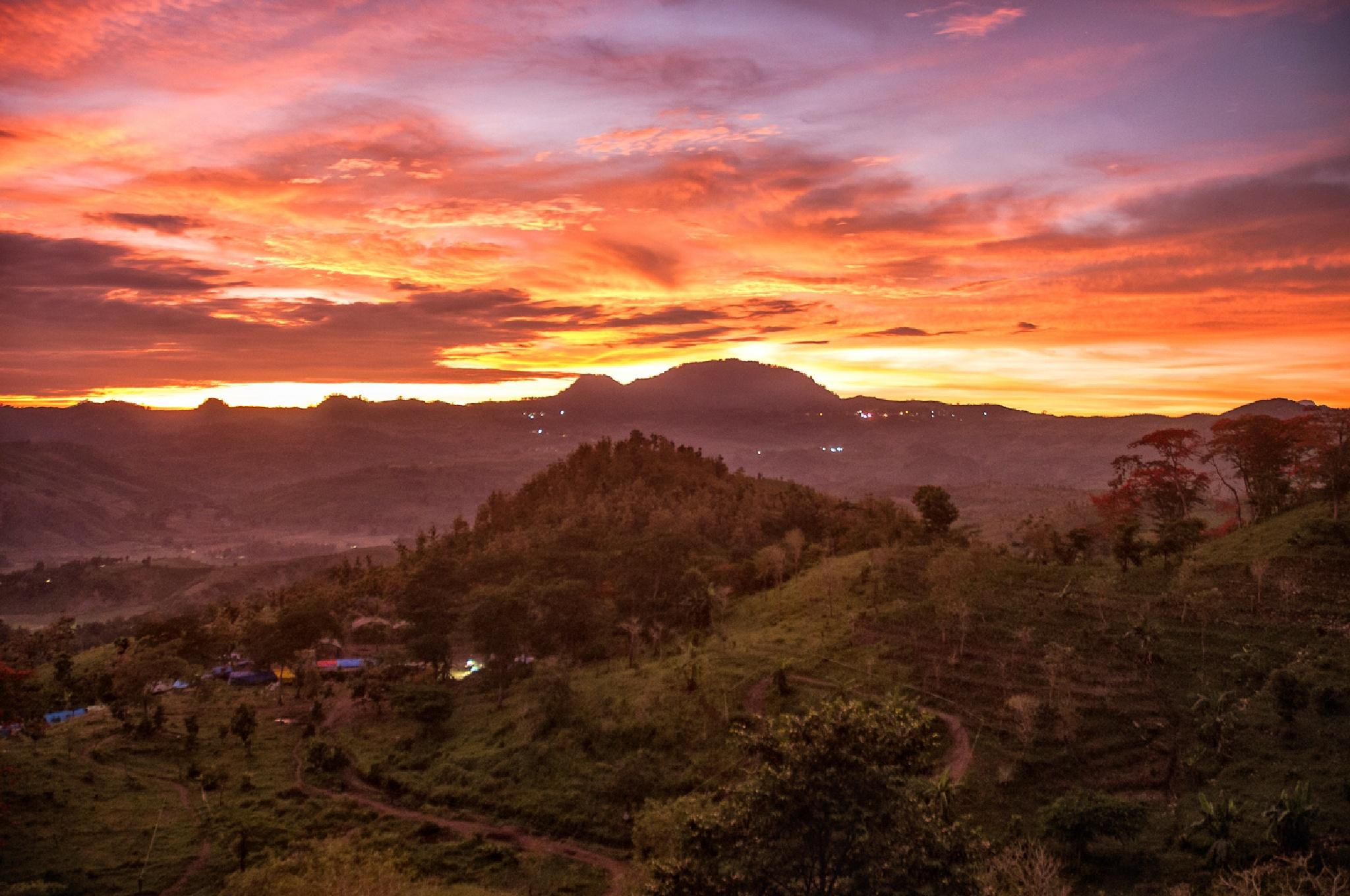 Photo in Landscape #landscape #nature #morning