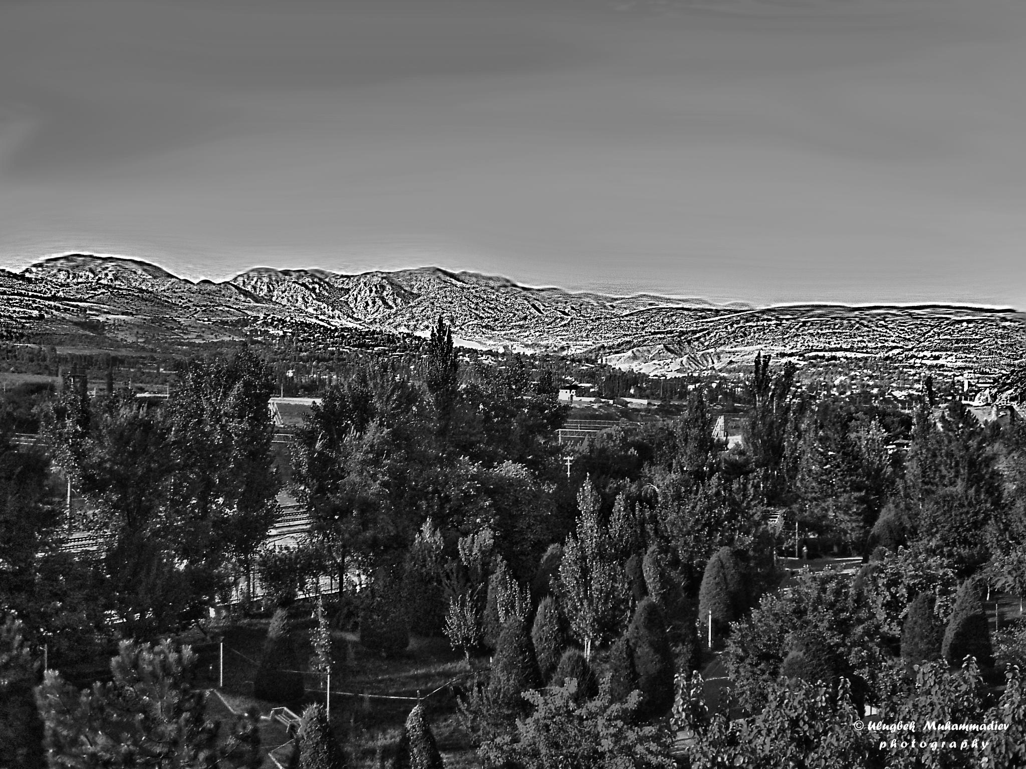 Black and white landscape ... by Ulugbek