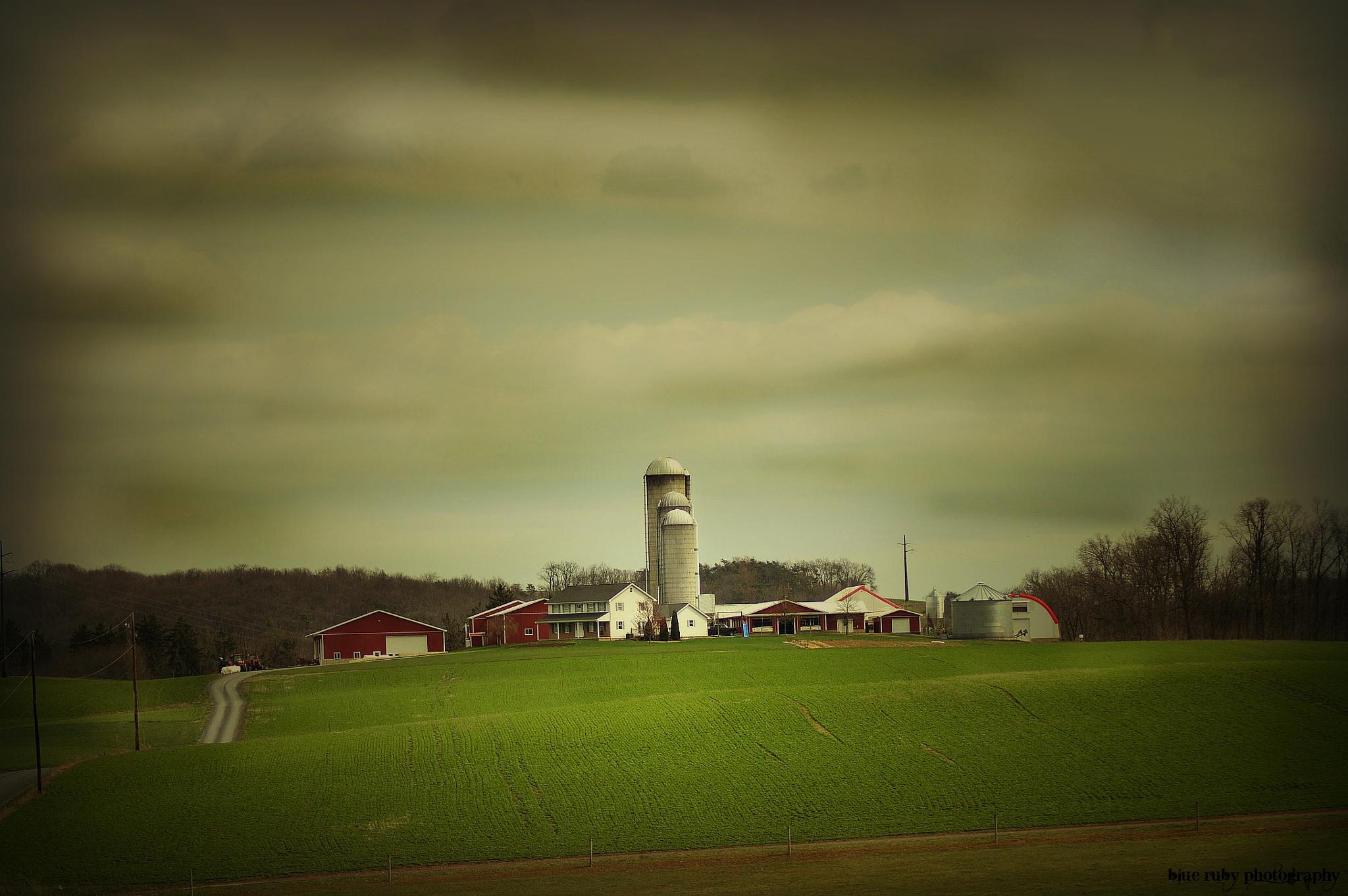 Amish country by kim.sobol