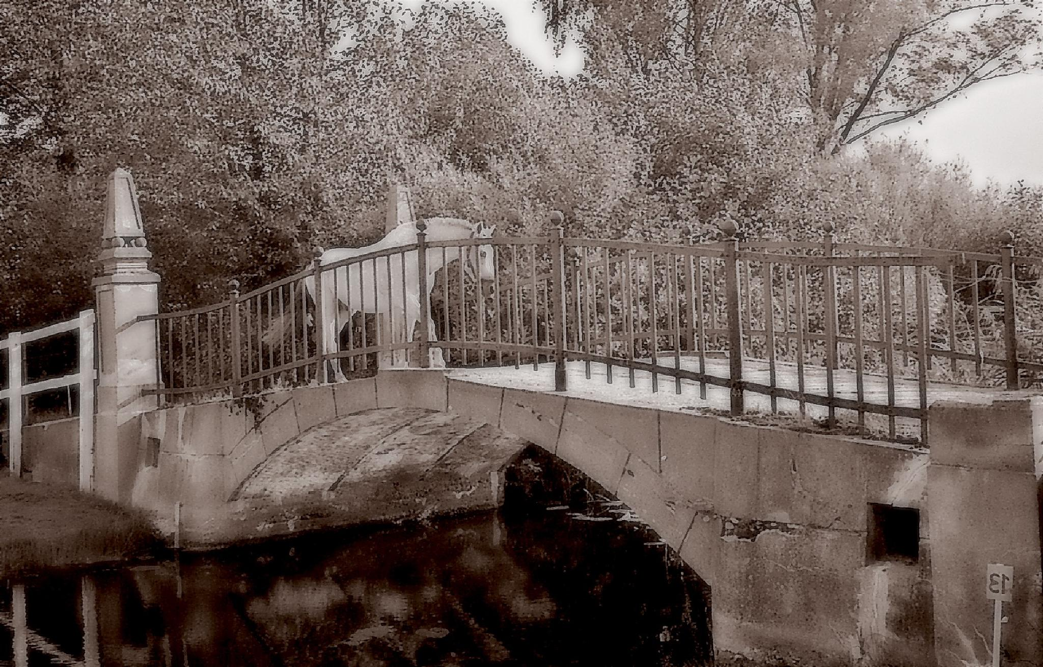 Horse on the bridge by RONNIE ERICSON
