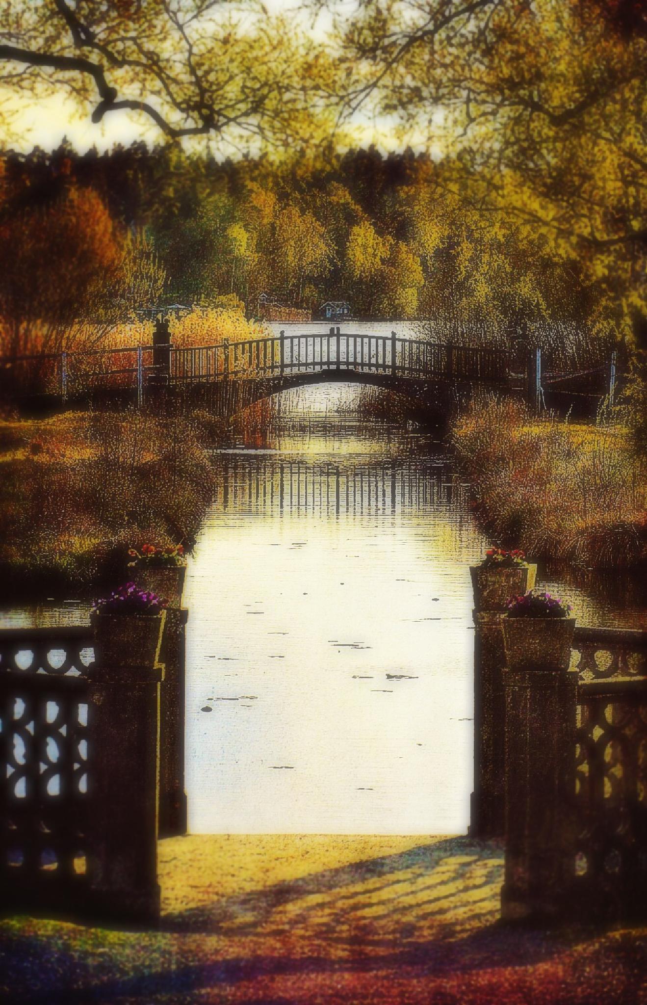 Water under bridge by RONNIE ERICSON