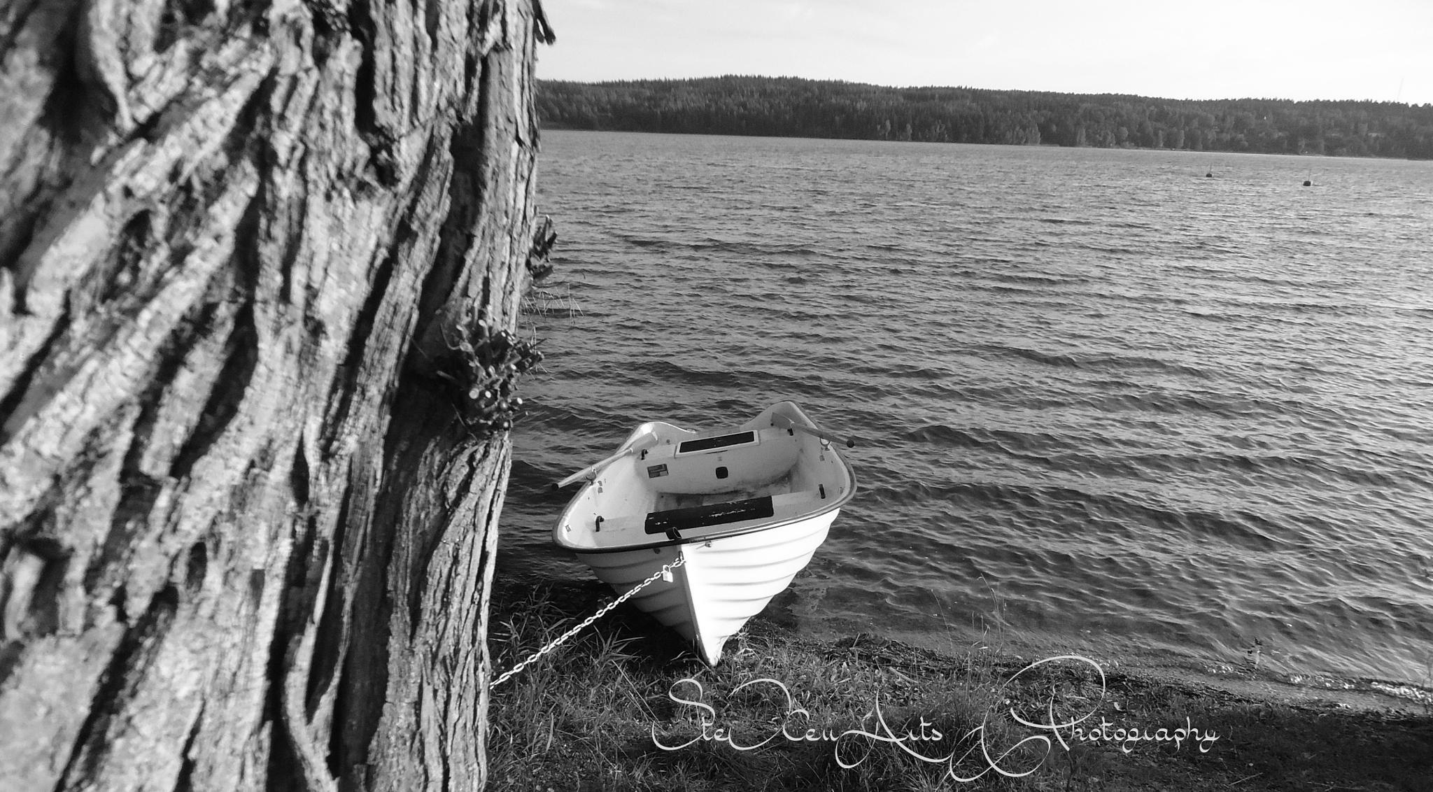 boat 2 by Sanna