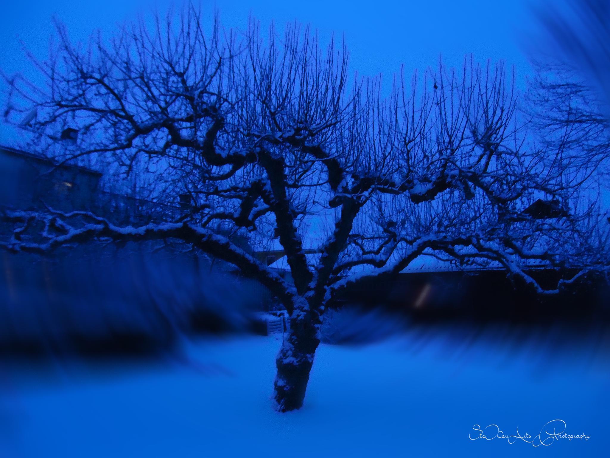 tree whirl by Sanna & Stefan