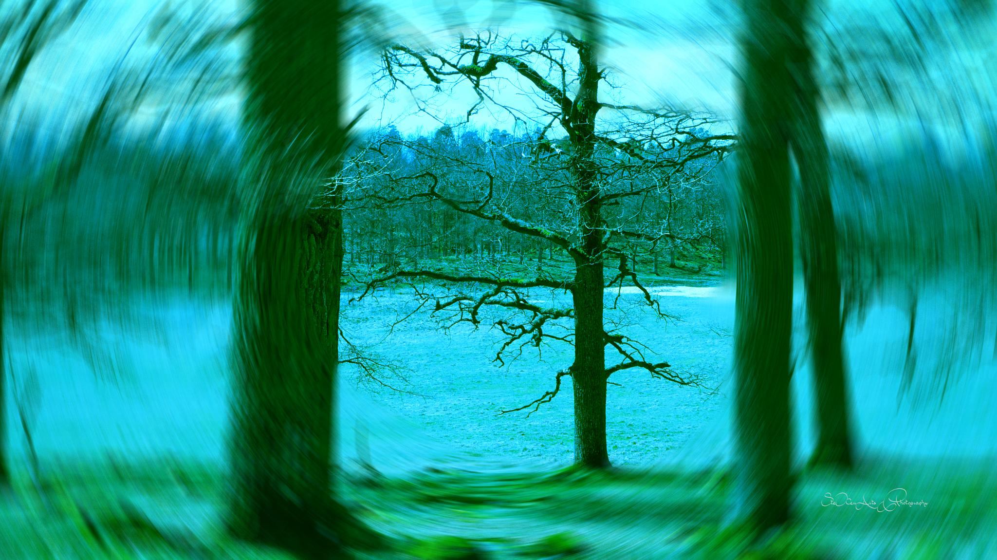 green vision by SteXenArts Photography