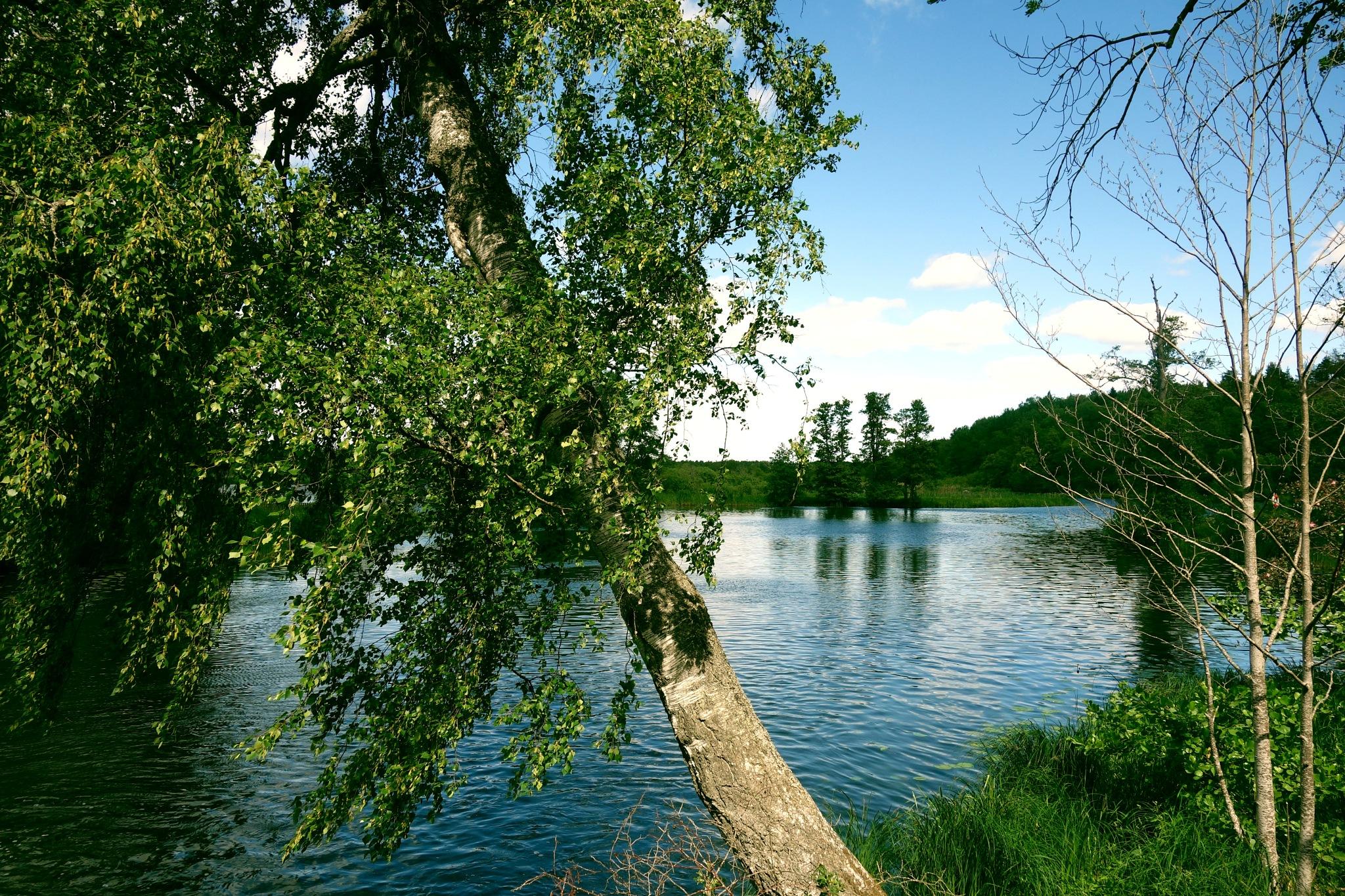 lake by Sanna & Stefan