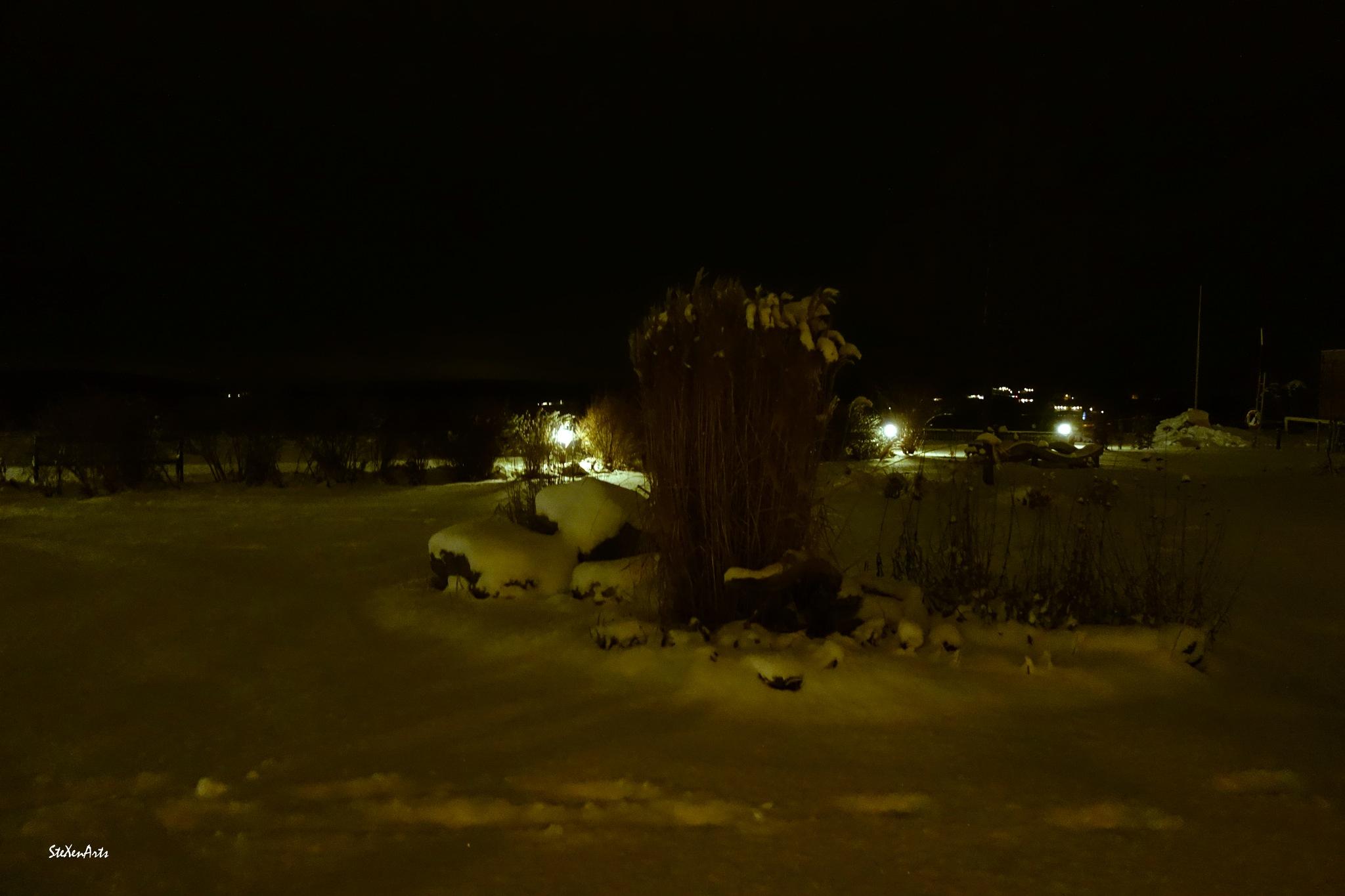 night in the park by Sanna & Stefan