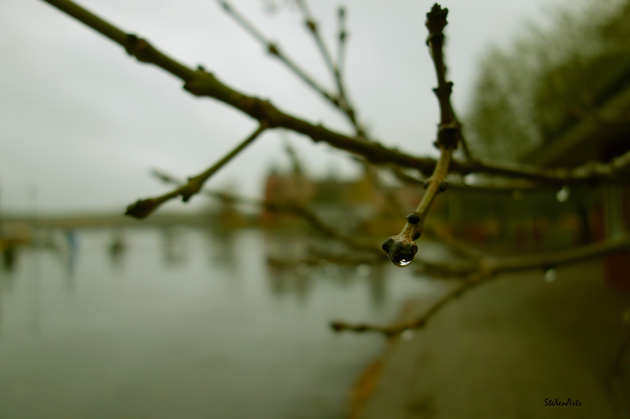 feel the rain by Sanna