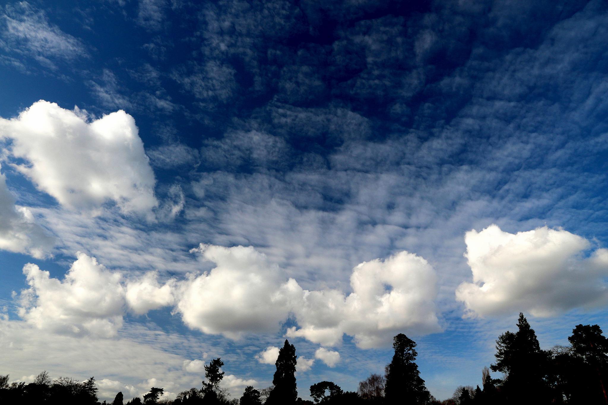Cloudscape 2218 (A Meeting of Cumuli) by Jon Franks