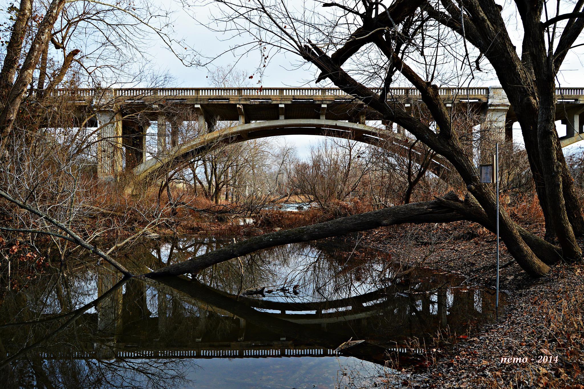 Reflection of the Bridge by Nemo
