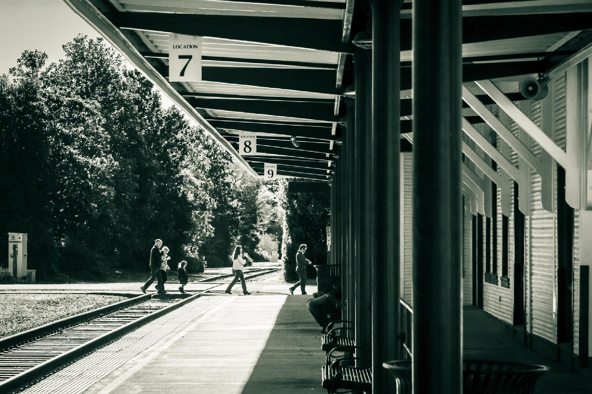 The Platform by NaturesVeiwsPhotography