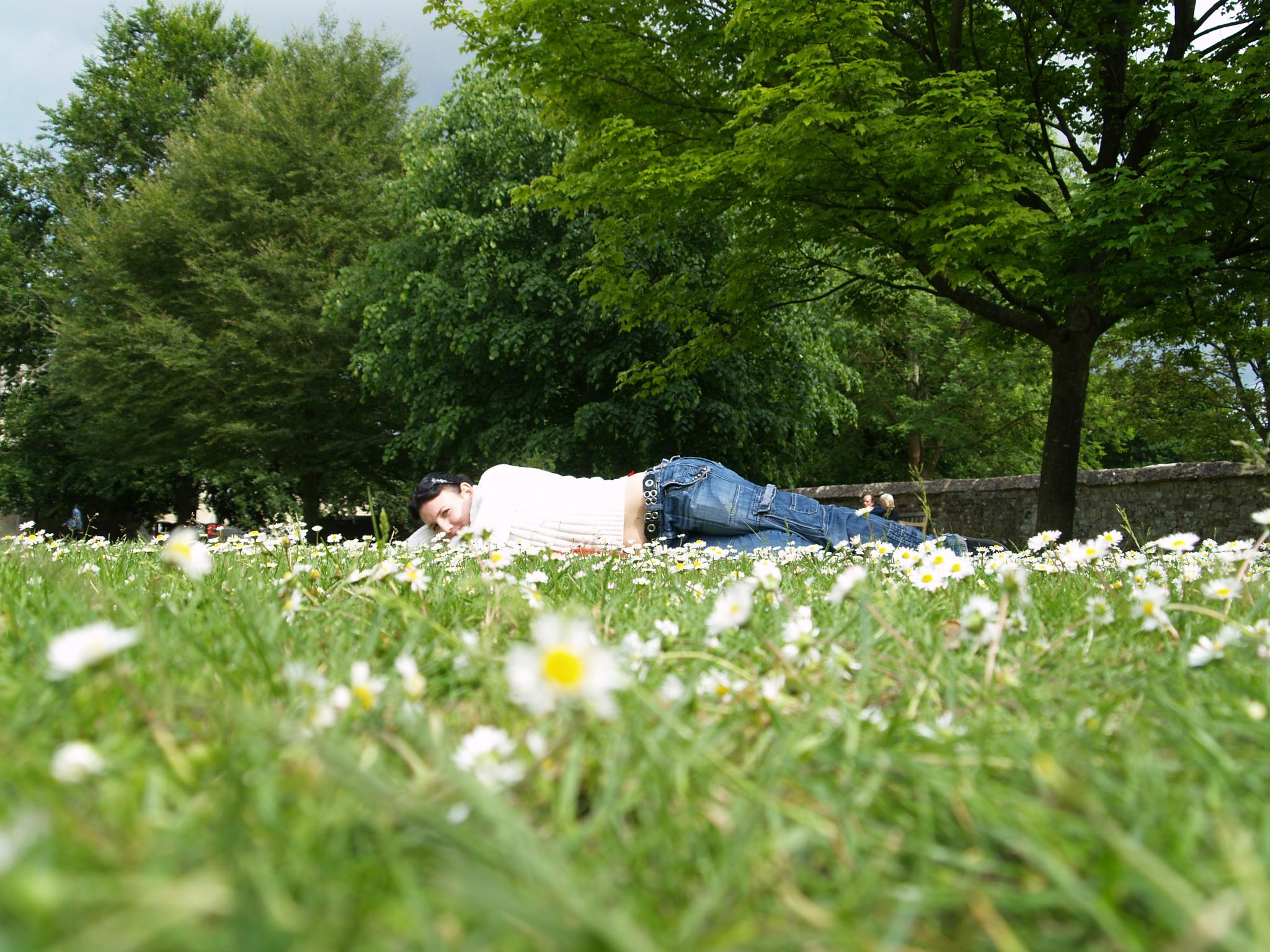 laying in a daisy field by ester.ayerdi