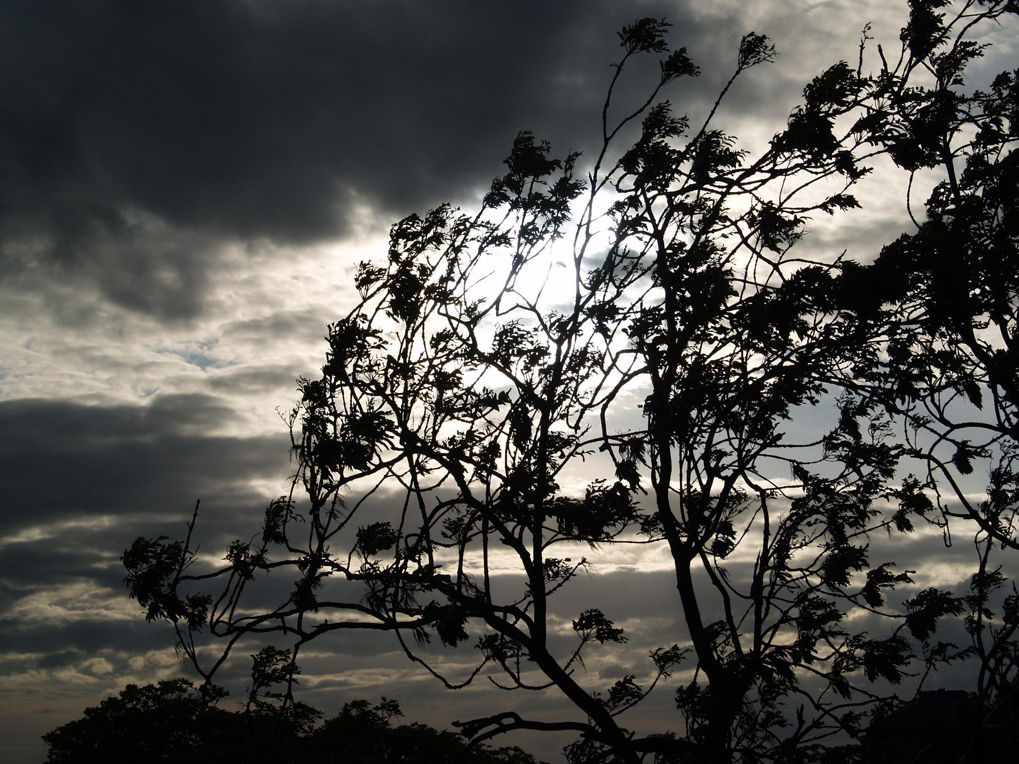 against the sun by ester.ayerdi