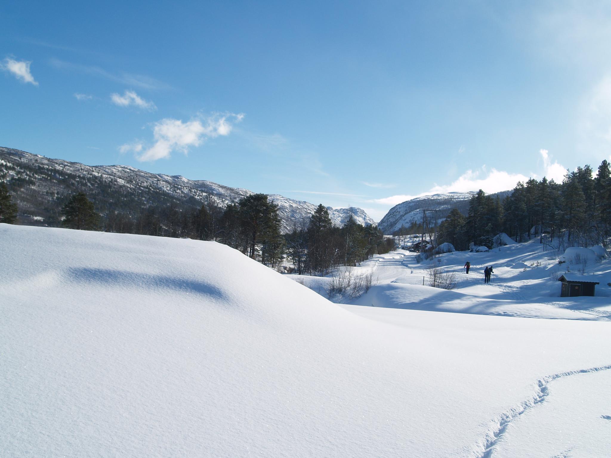 Winter landscape by ester.ayerdi
