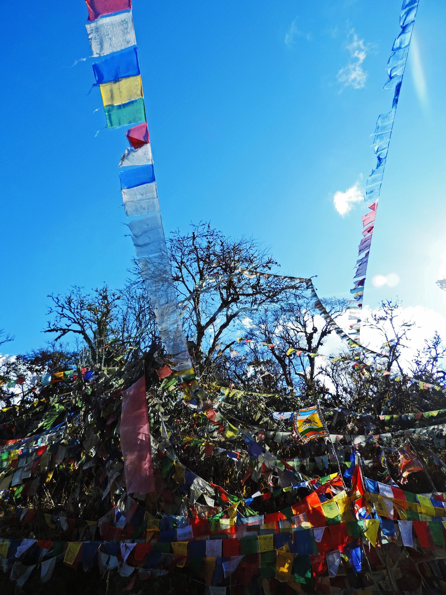 prayer flags. by Vivian Yeong