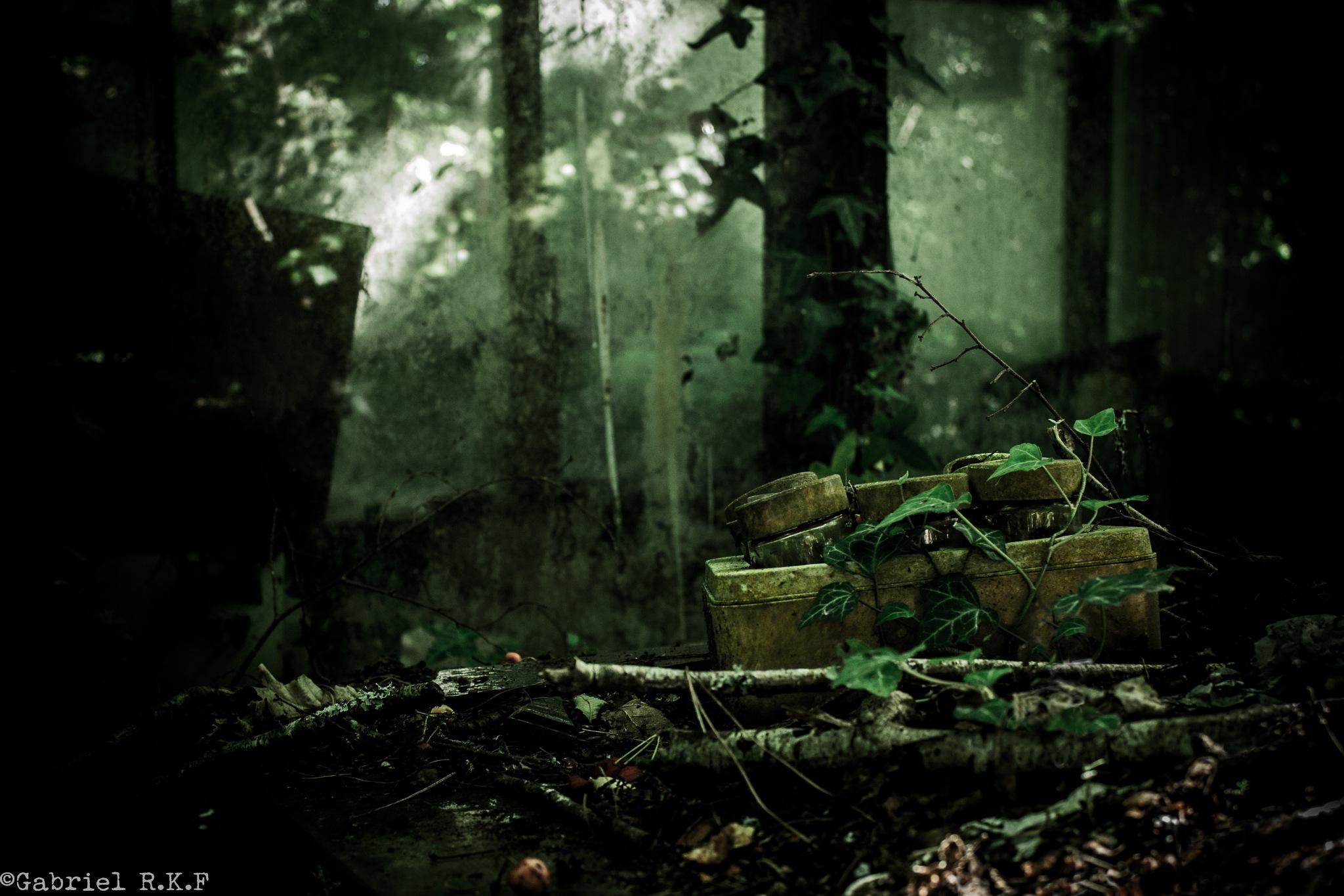 Decaying Fast... by GabrielR.K.F