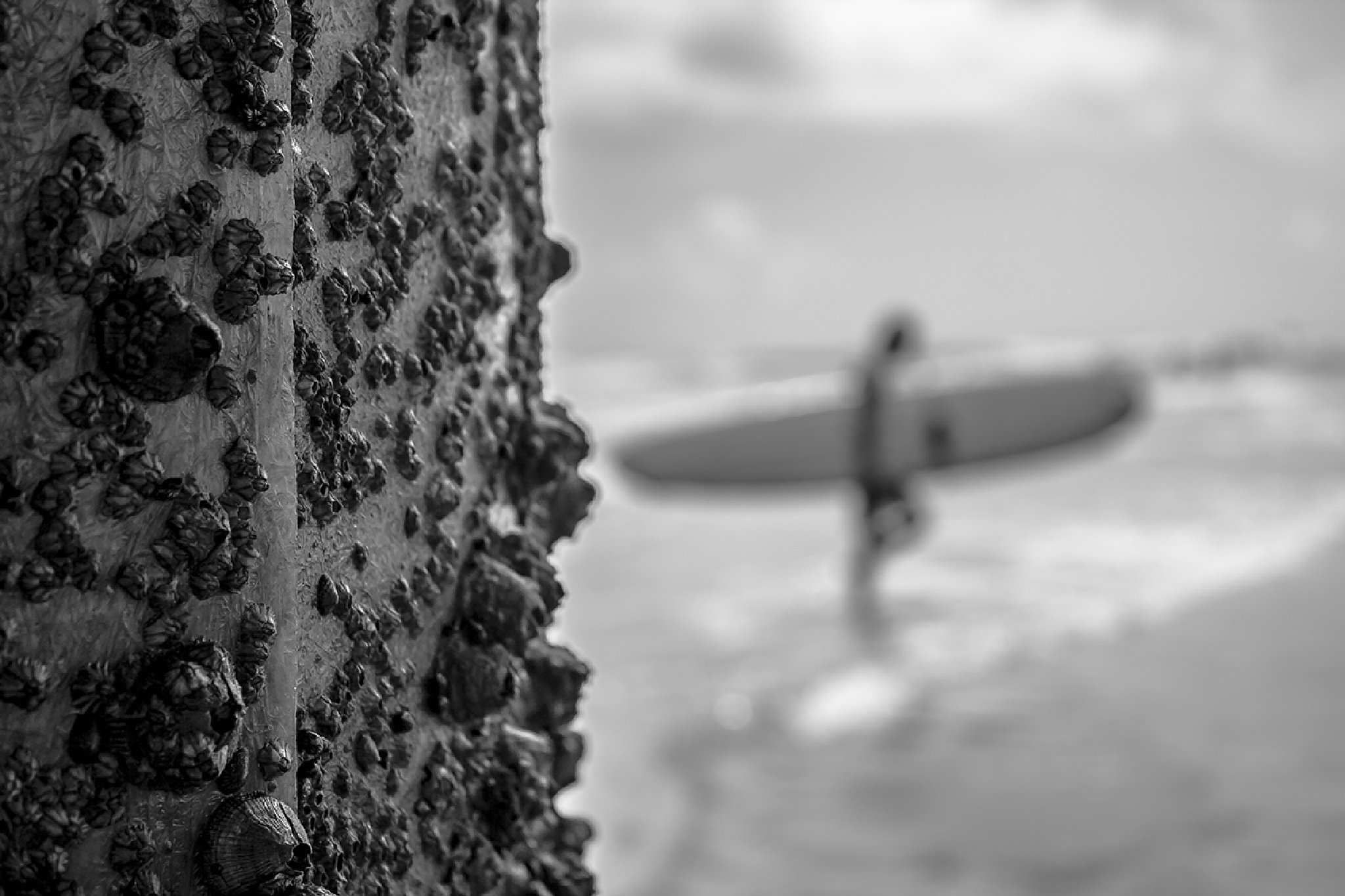 Surfer by omargalarza