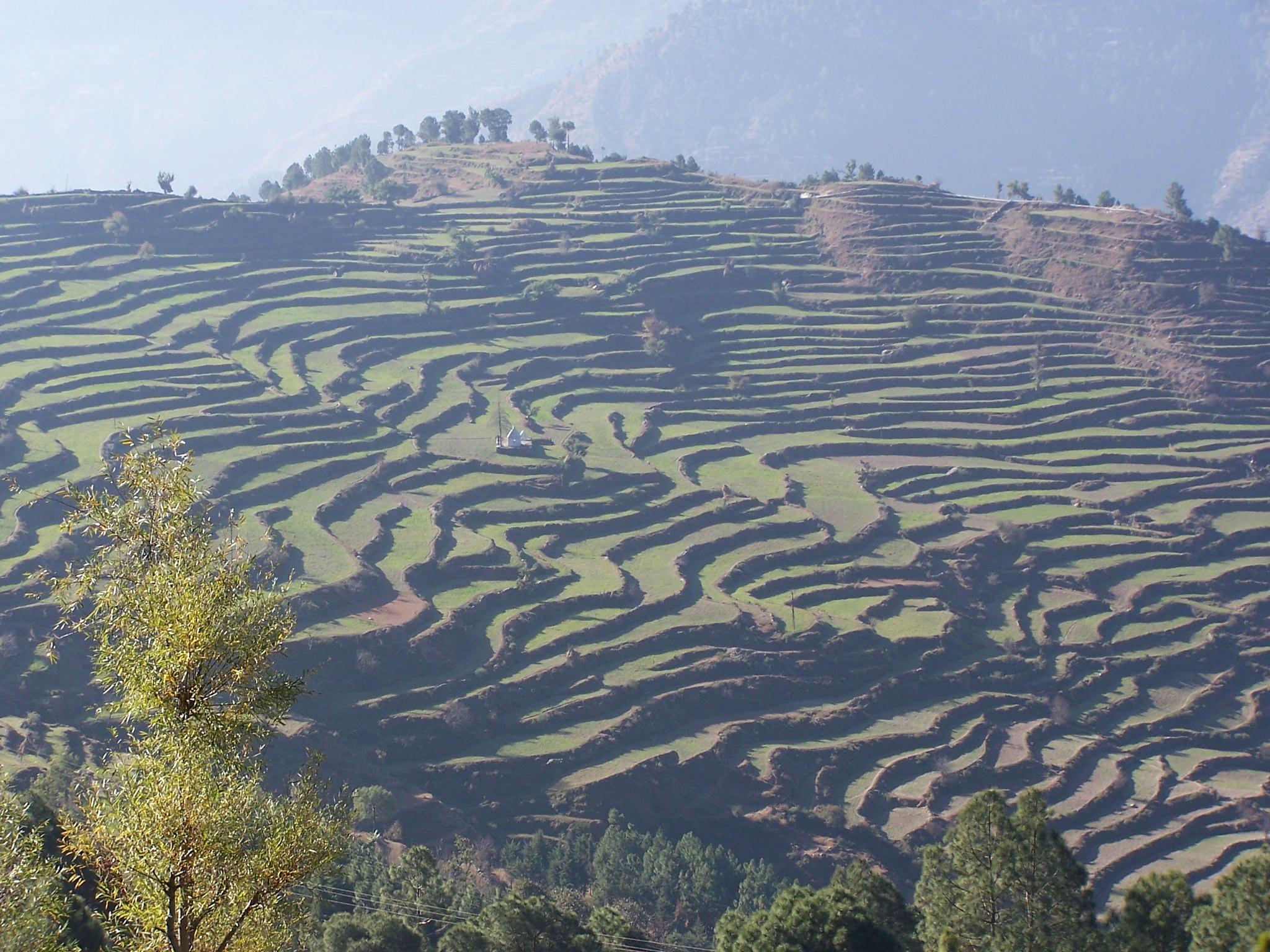 ~~~~~~The Morning light &  Foot Hills Farming..Fields...! by gajju.tyagi.1