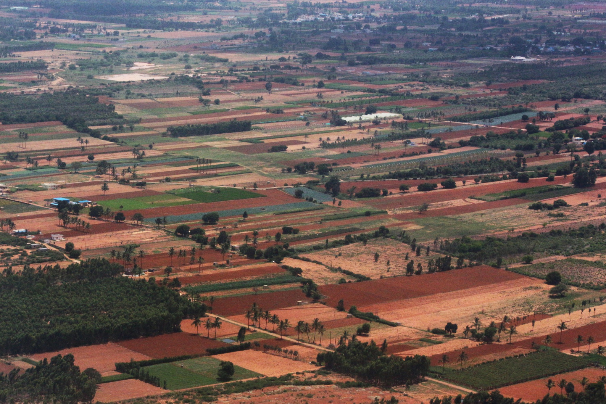 ~~~~~~Fields of Karnataka,........!! by gajju.tyagi.1
