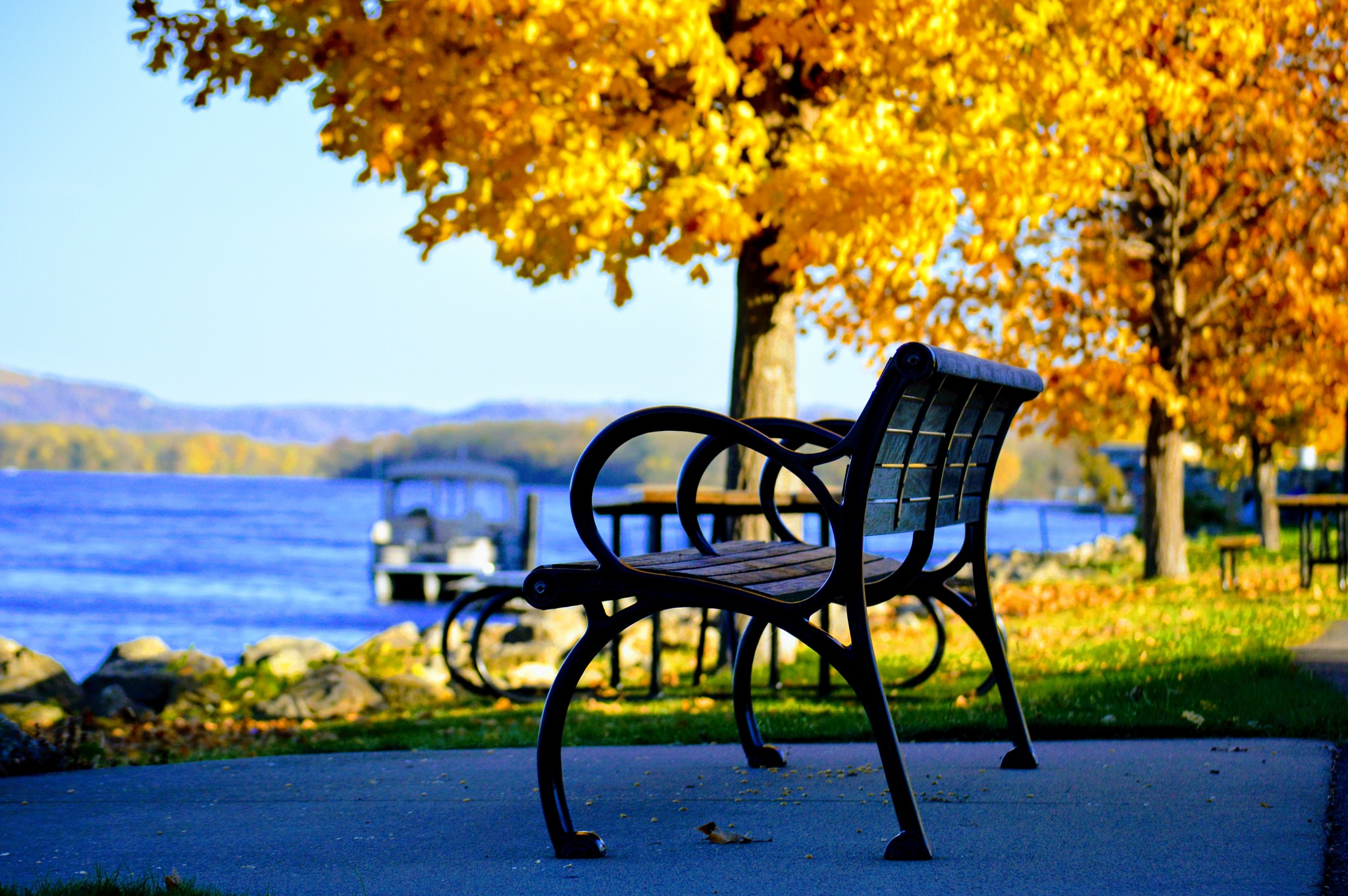 Bench on the Mississippi River at Wabasha, MN by drcarlosesparza