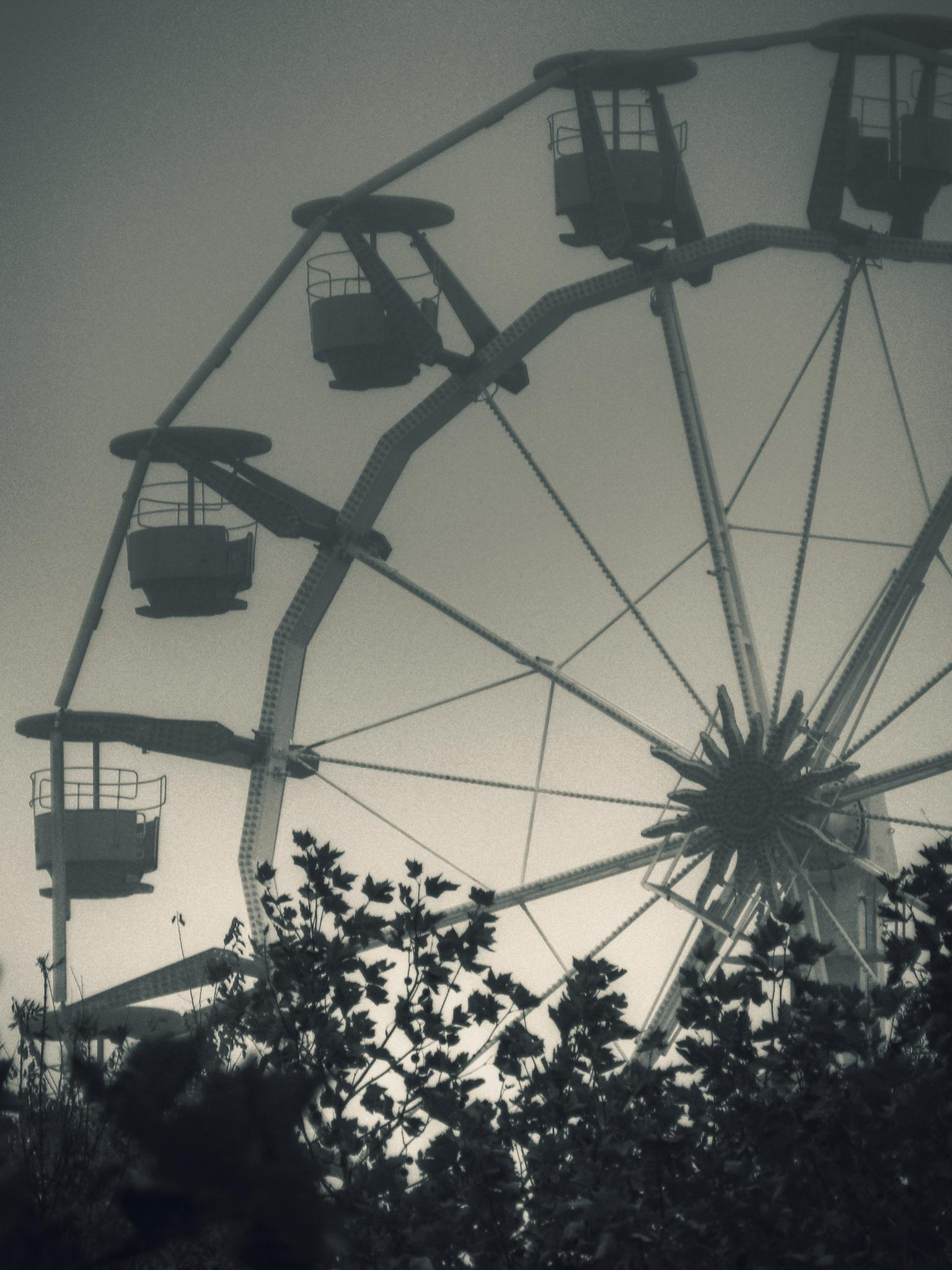 The wheel by AdrianBotescu