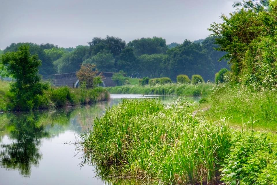Lancaster Canal uk...090611 by Michael jjg