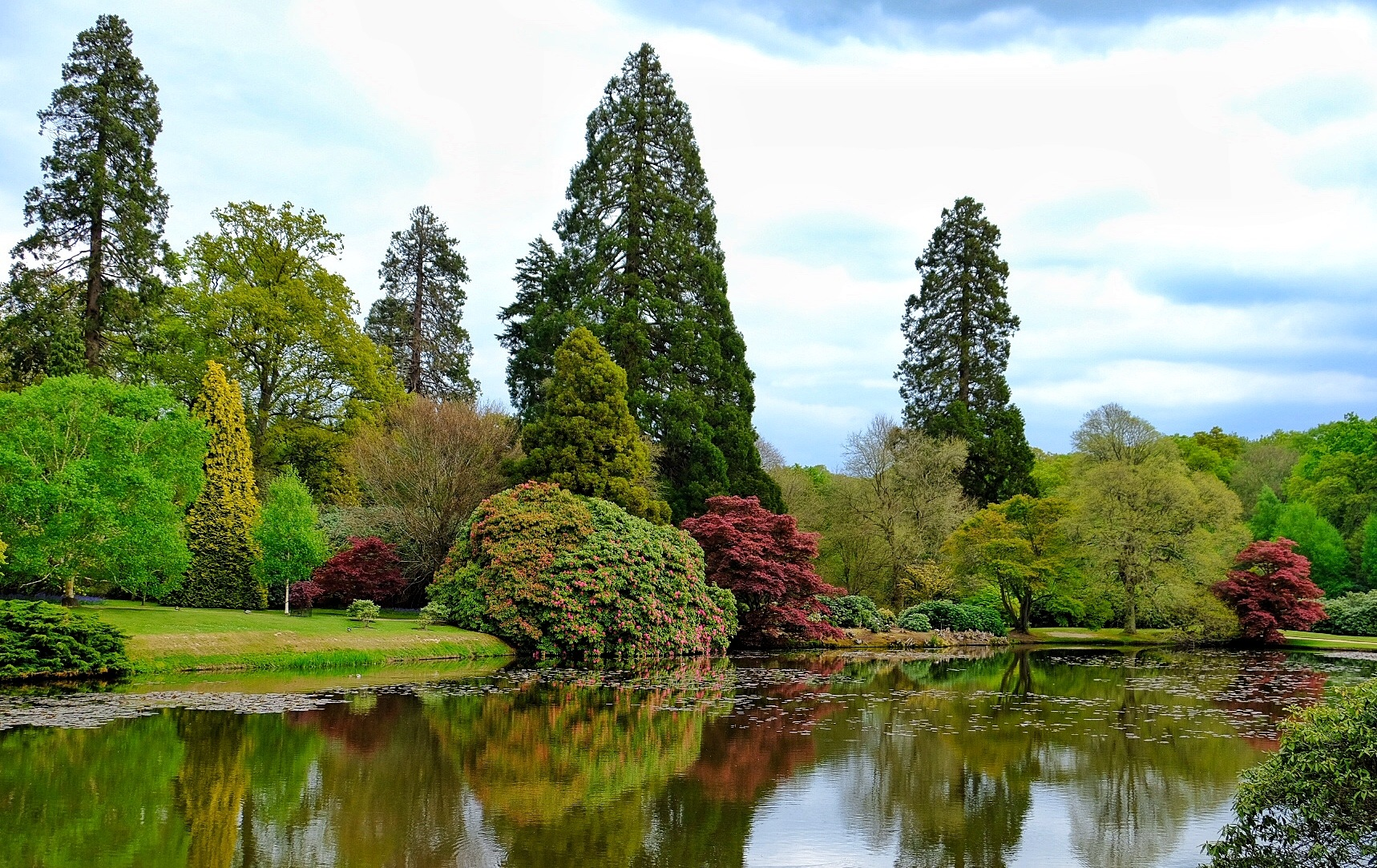Sheffield Park NT Sussex uk... by Michael jjg