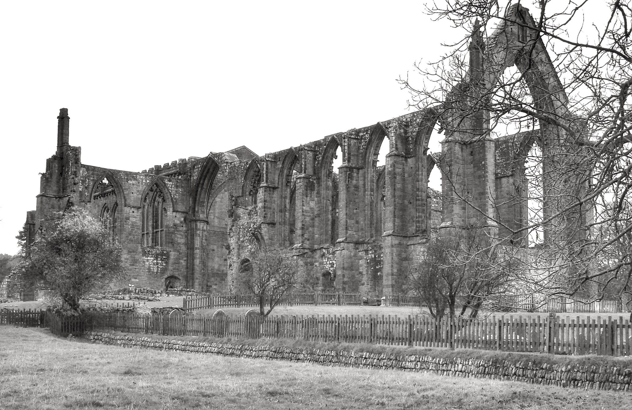 B&W Bolton Abbey 'ruins' North Yorks uk...bw23062043 by Michael jjg