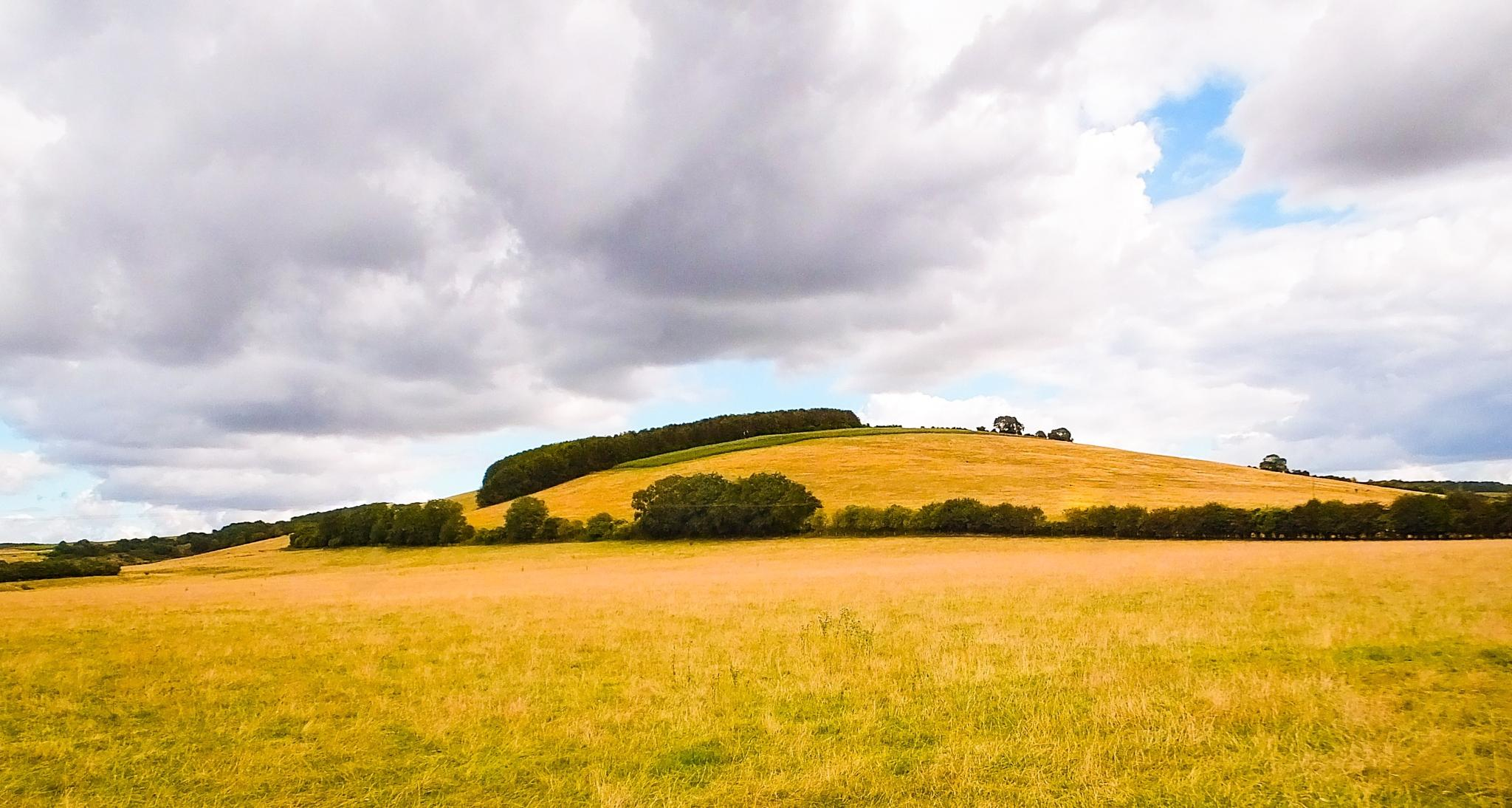 The Mound... by Michael jjg