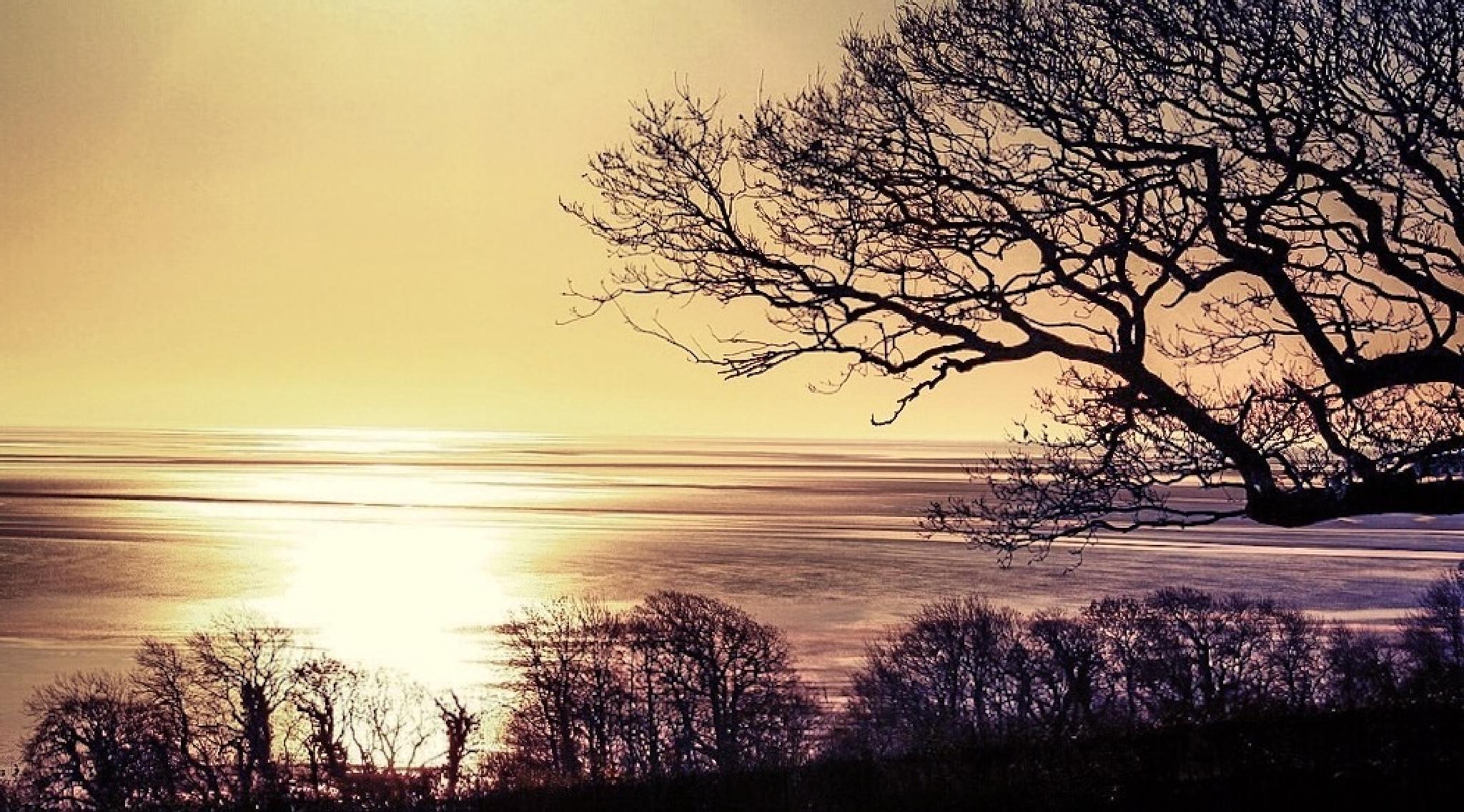 Sunrise over Morecambe Bay Cumbria... by Michael jjg