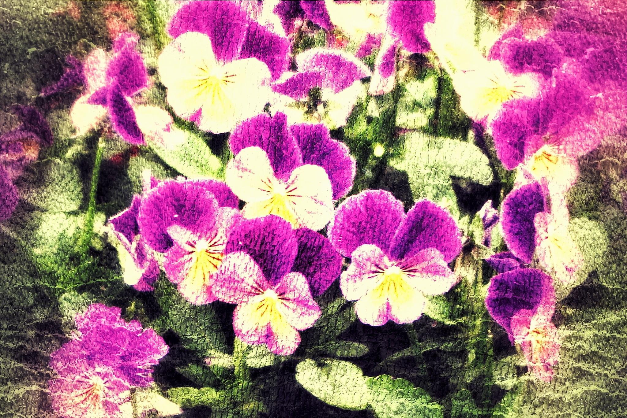 Flower iiia... by Michael jjg