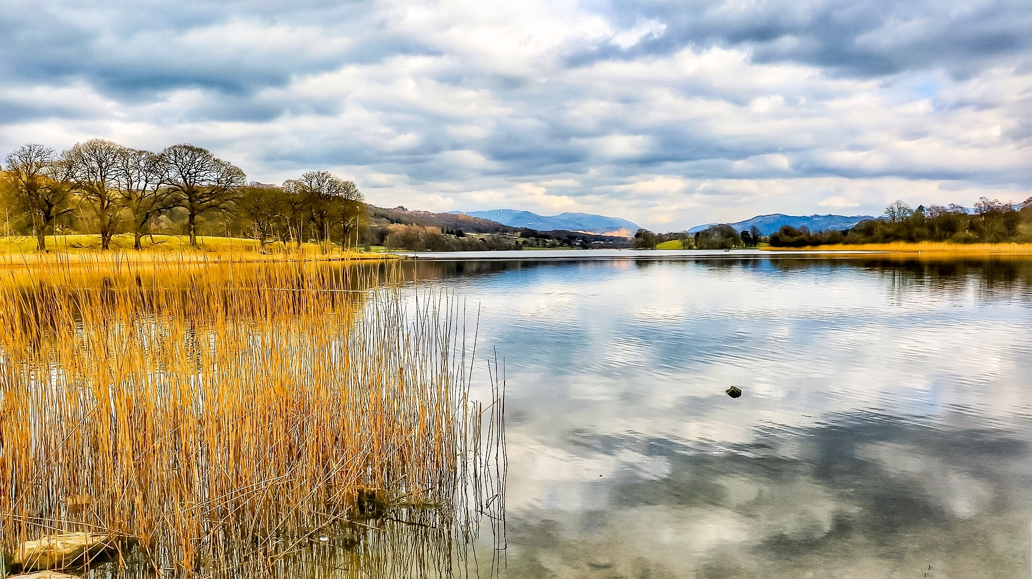 Lake Cloud Reflectionsons...16061446 by Michael jjg