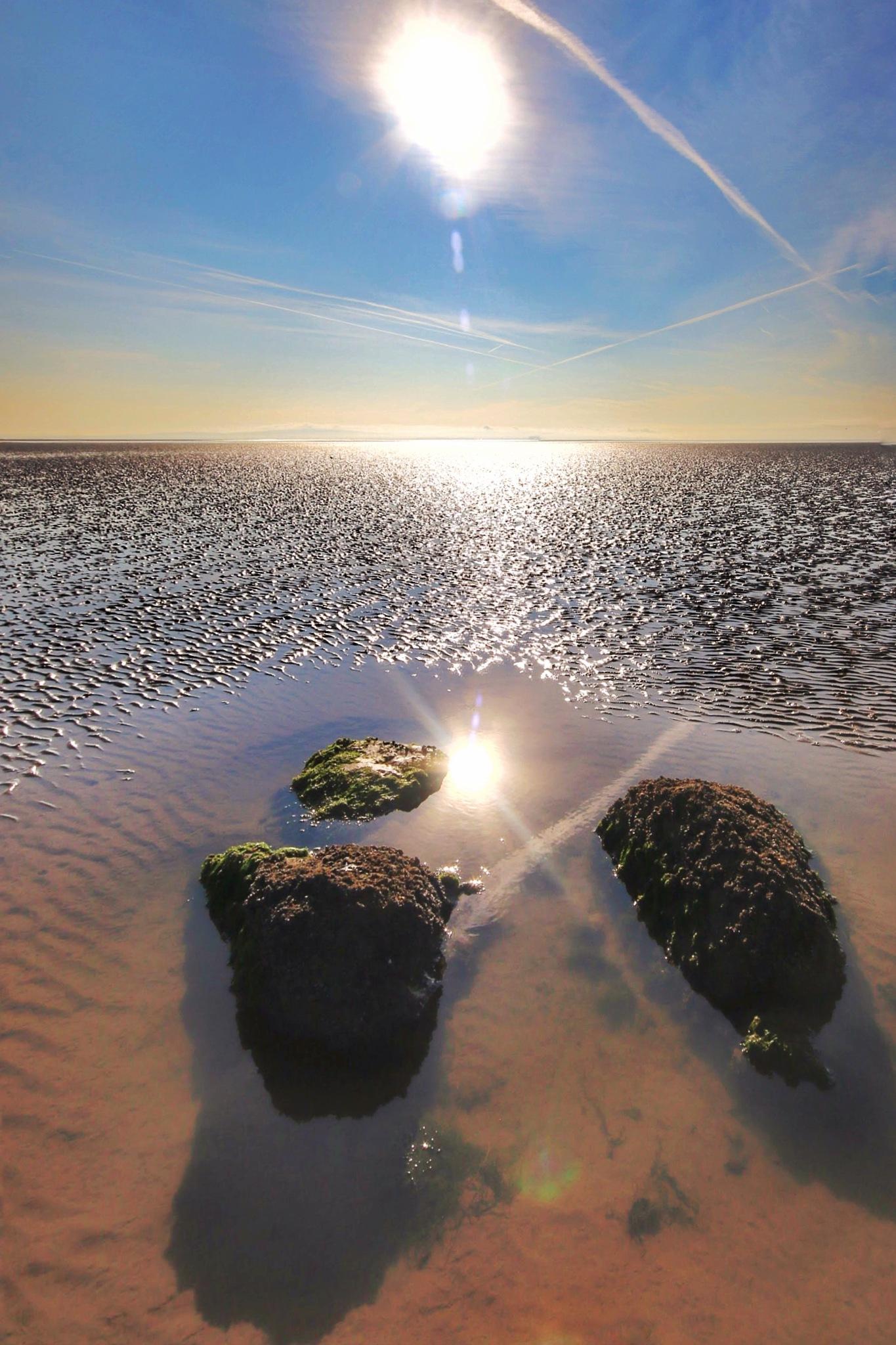 Sun Reflection... by Michael jjg