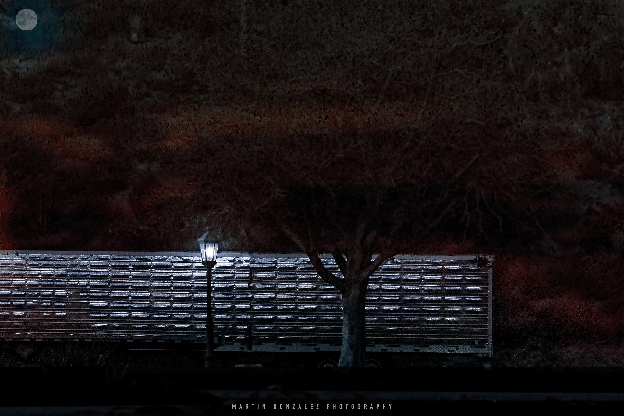 Night Time by Martin G. Olivera