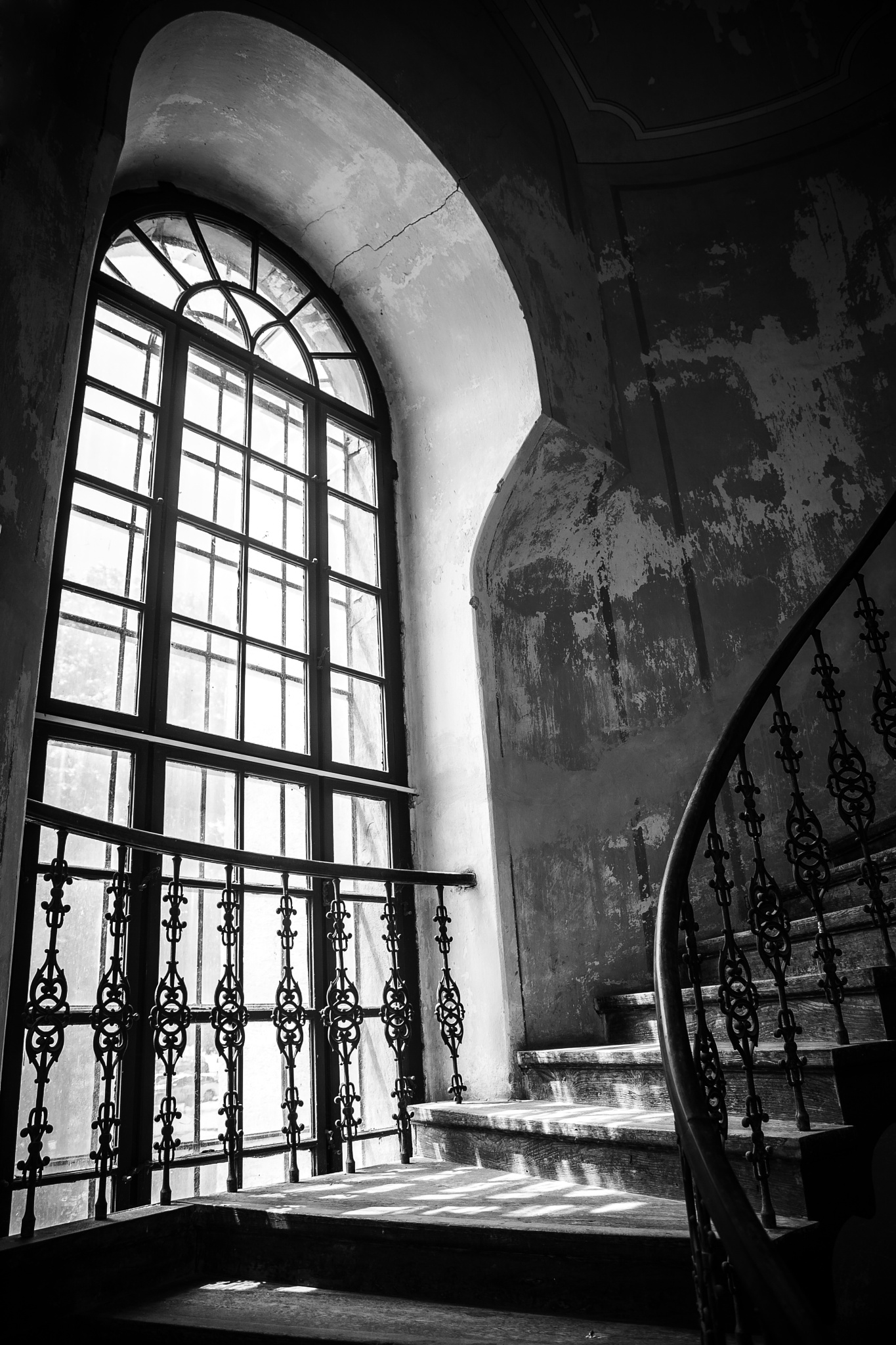 Window by Peter Final