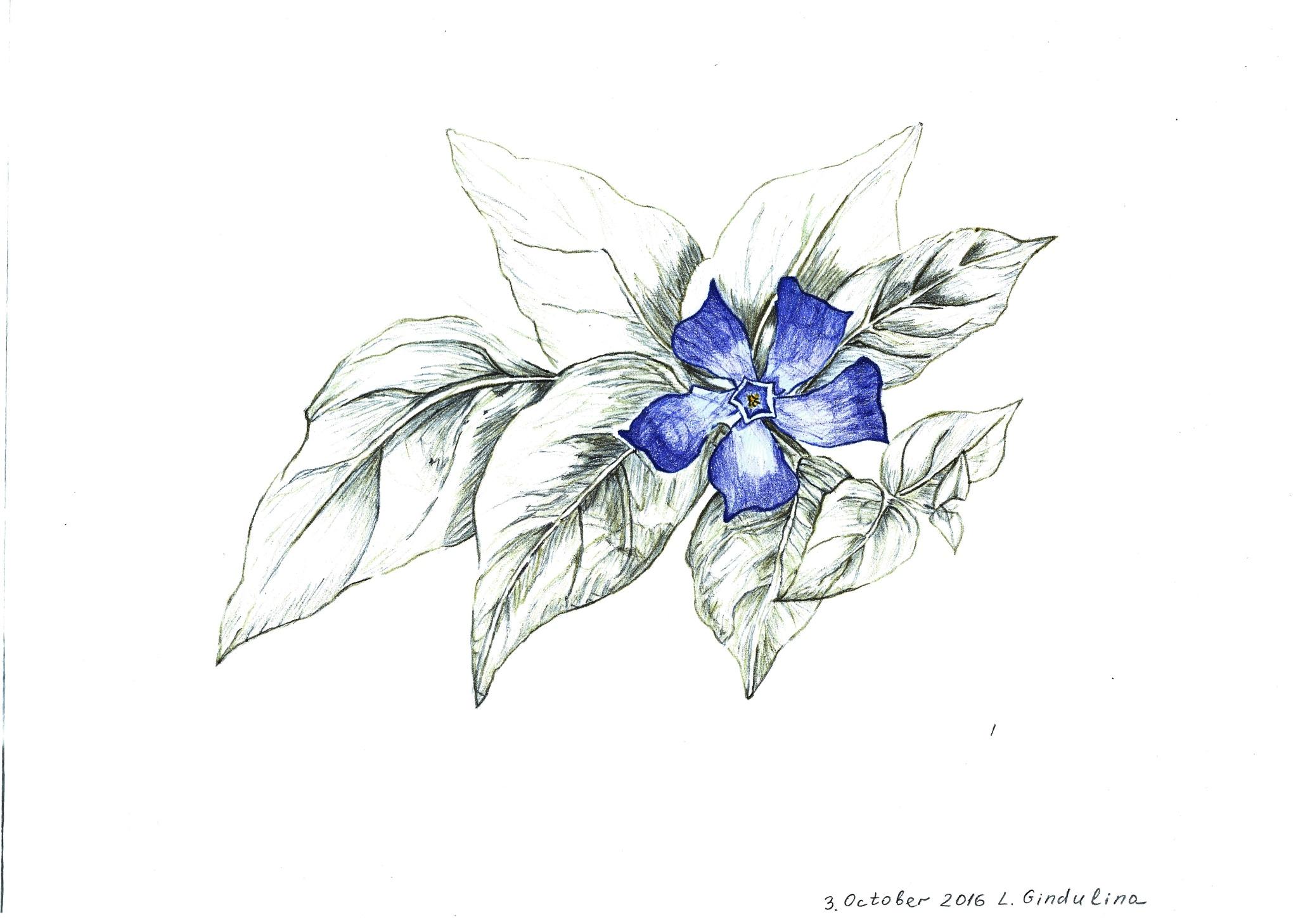 Flower. The copy. 20x30 cm by LudmilaGindulina