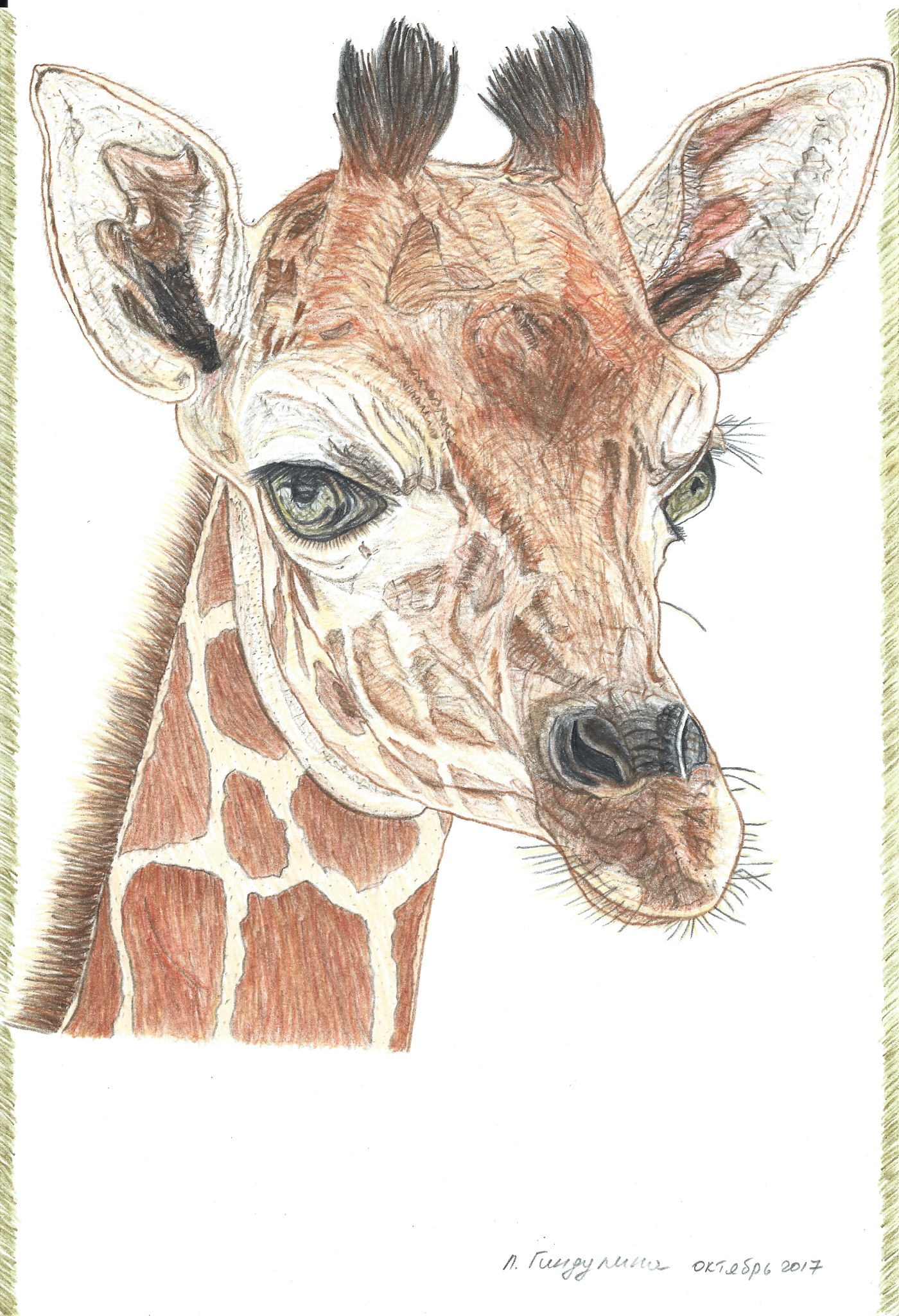 Giraffe by LudmilaGindulina