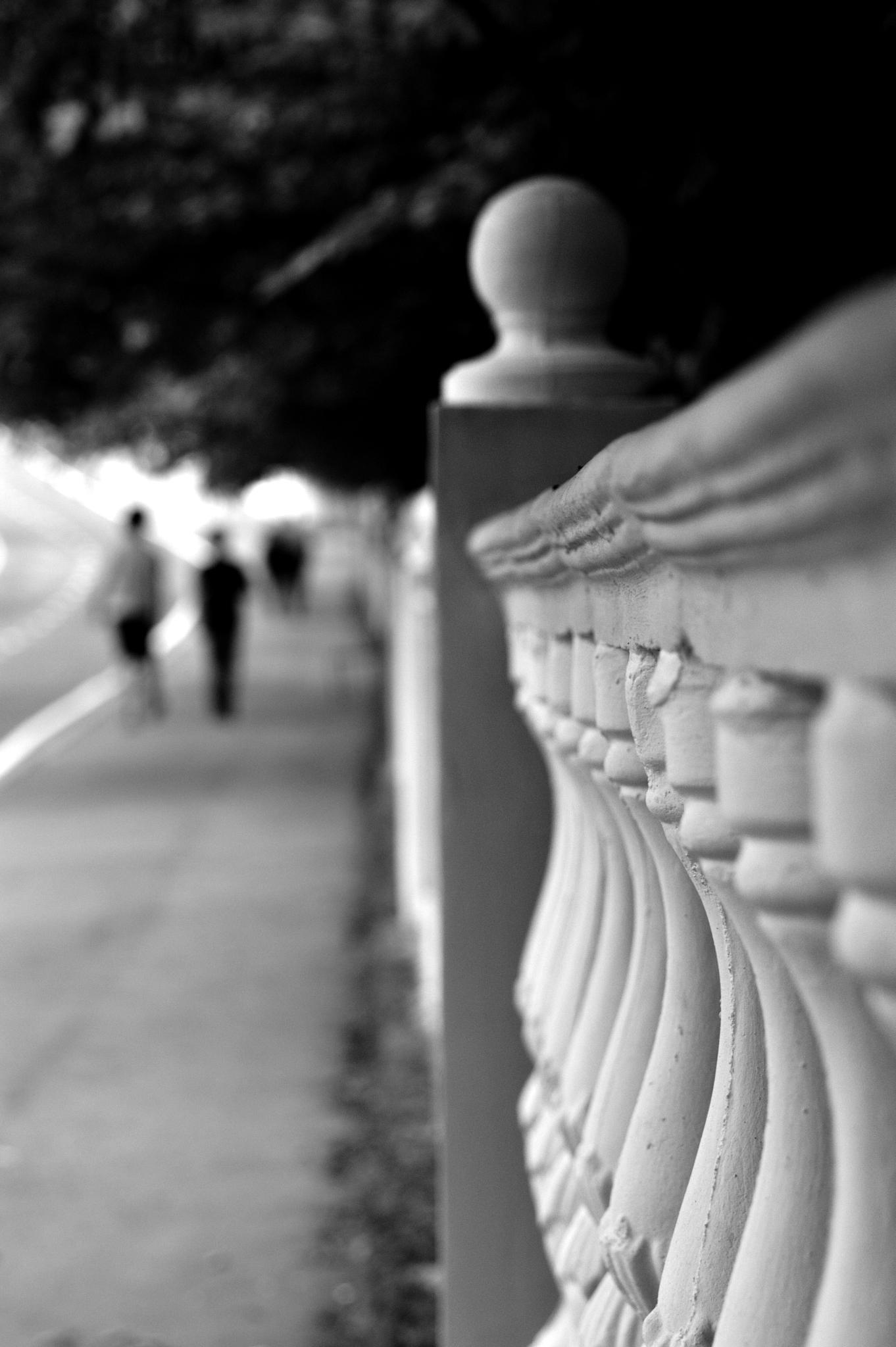 walkers  by Hermine Makaryan