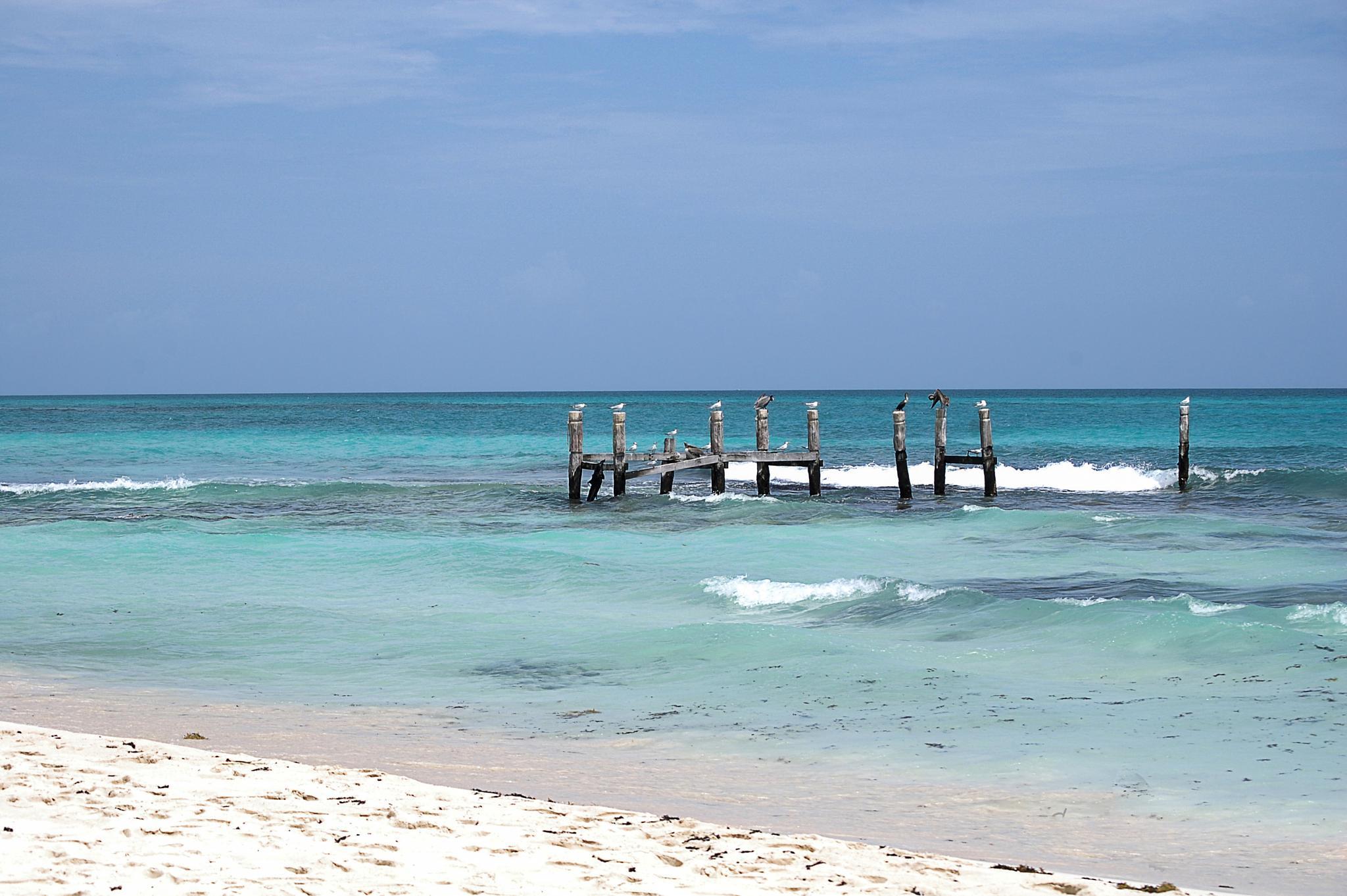 Sea mexico by linda.boisvert.359