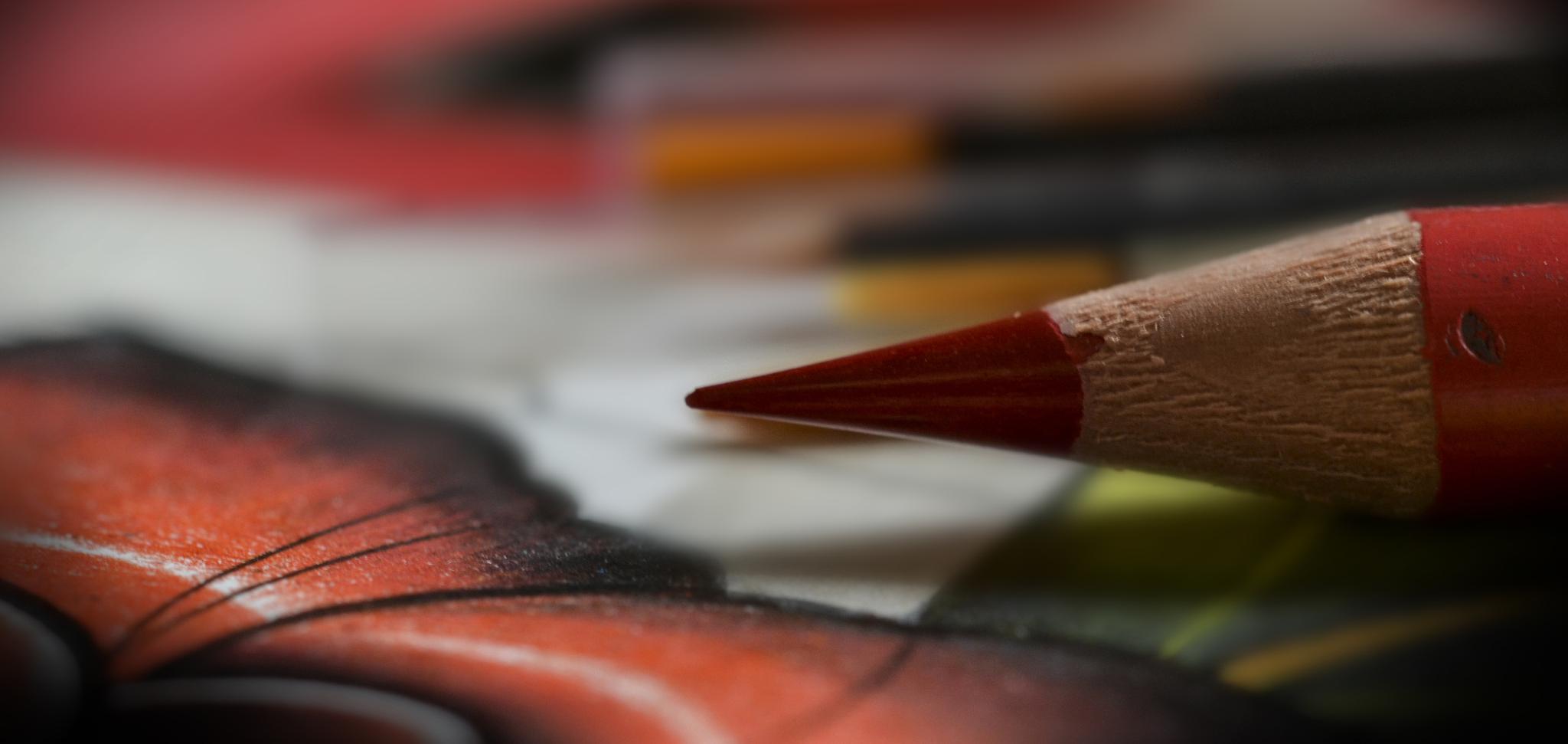 colored pencil by linda.boisvert.359
