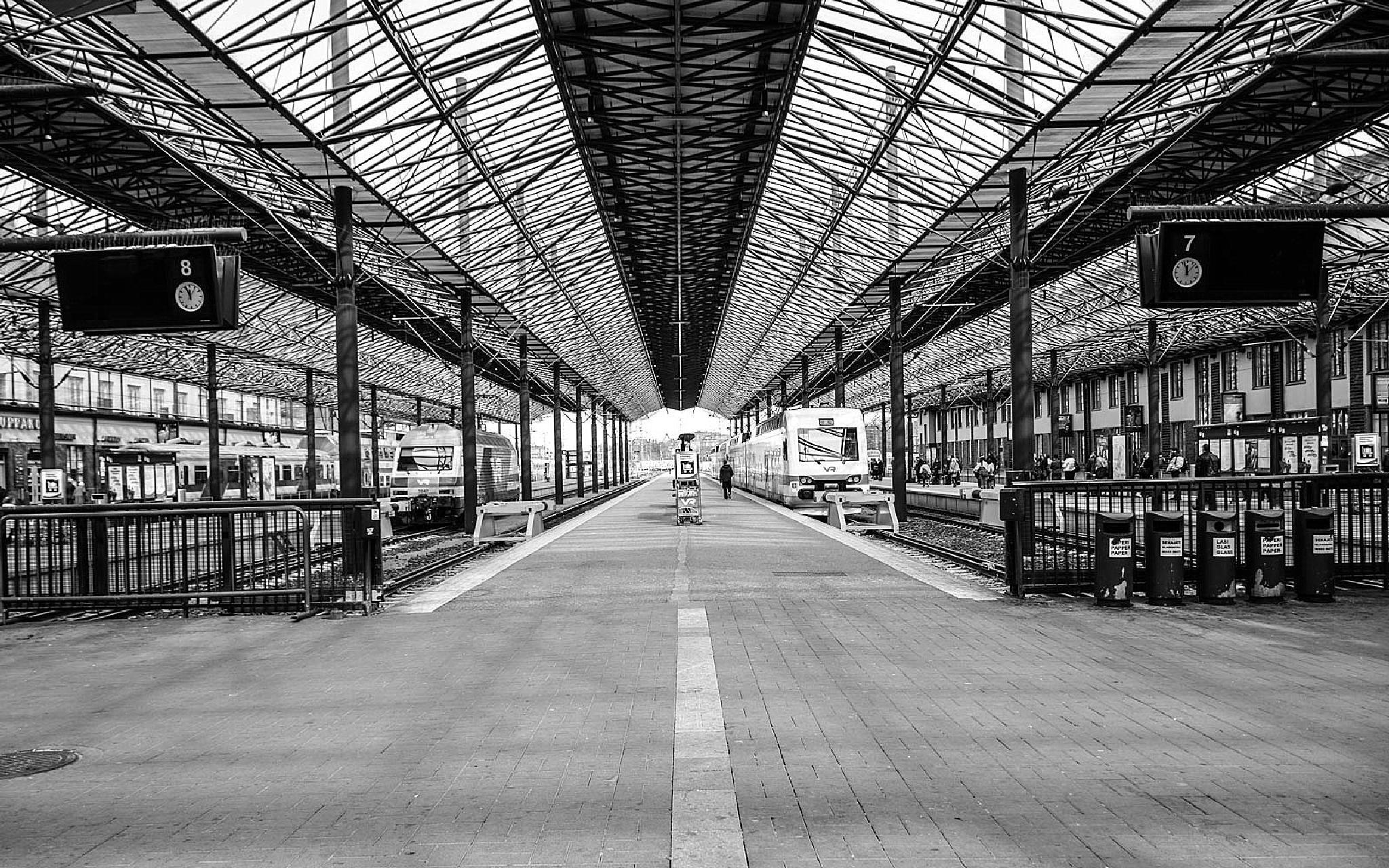 Platform No. 7 & 8 - Black & White  by aronrielle