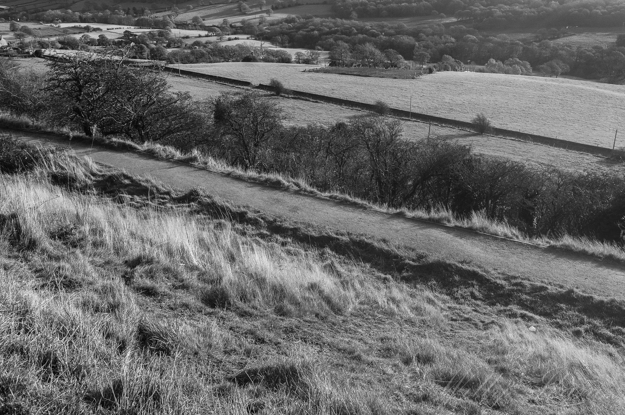 Photo in Random #atefe #diurna #emiliano #familia #huddesfield #landscapes #uk #colline #huddersfield