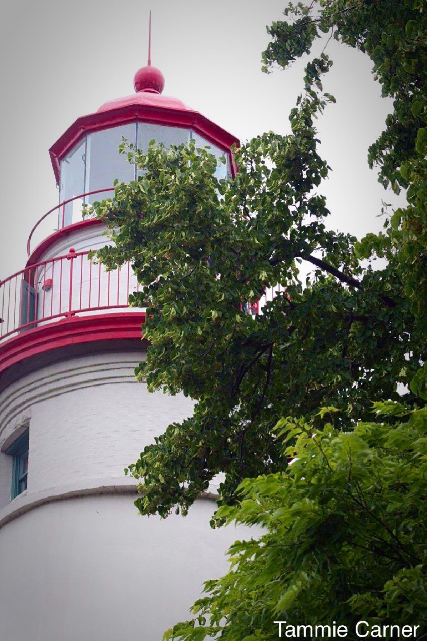 Marble Head Light House by Tammie Jones