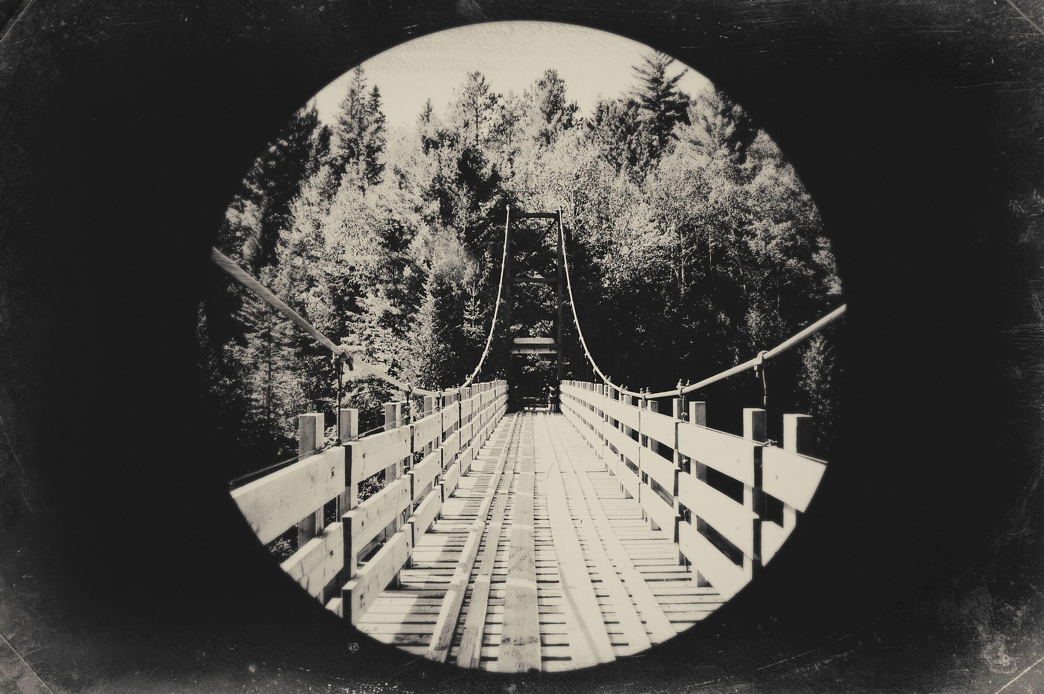 The Crossing. by Adida Fallen Angel