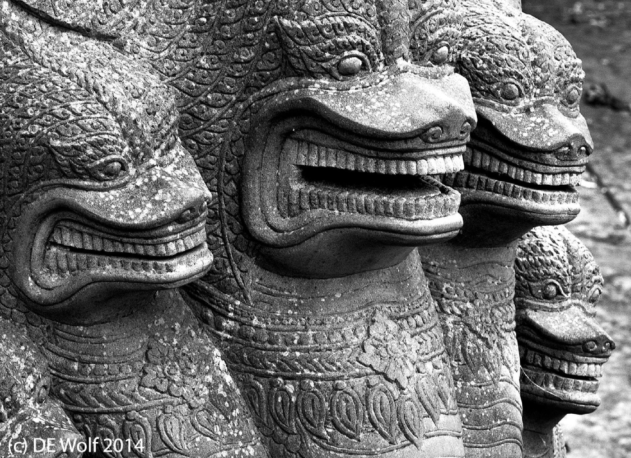 Sheesha or the Naga by David E. Wolf