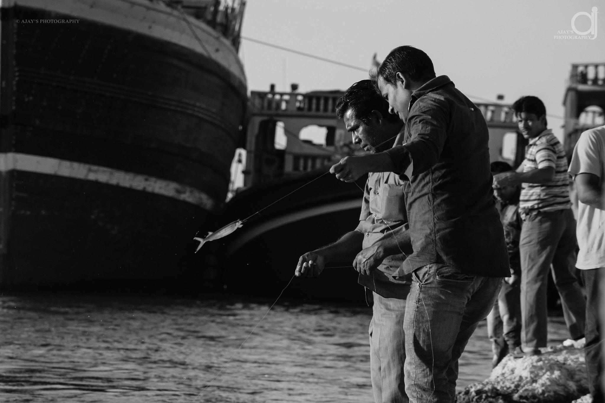 the catch by Ajay Harikumar