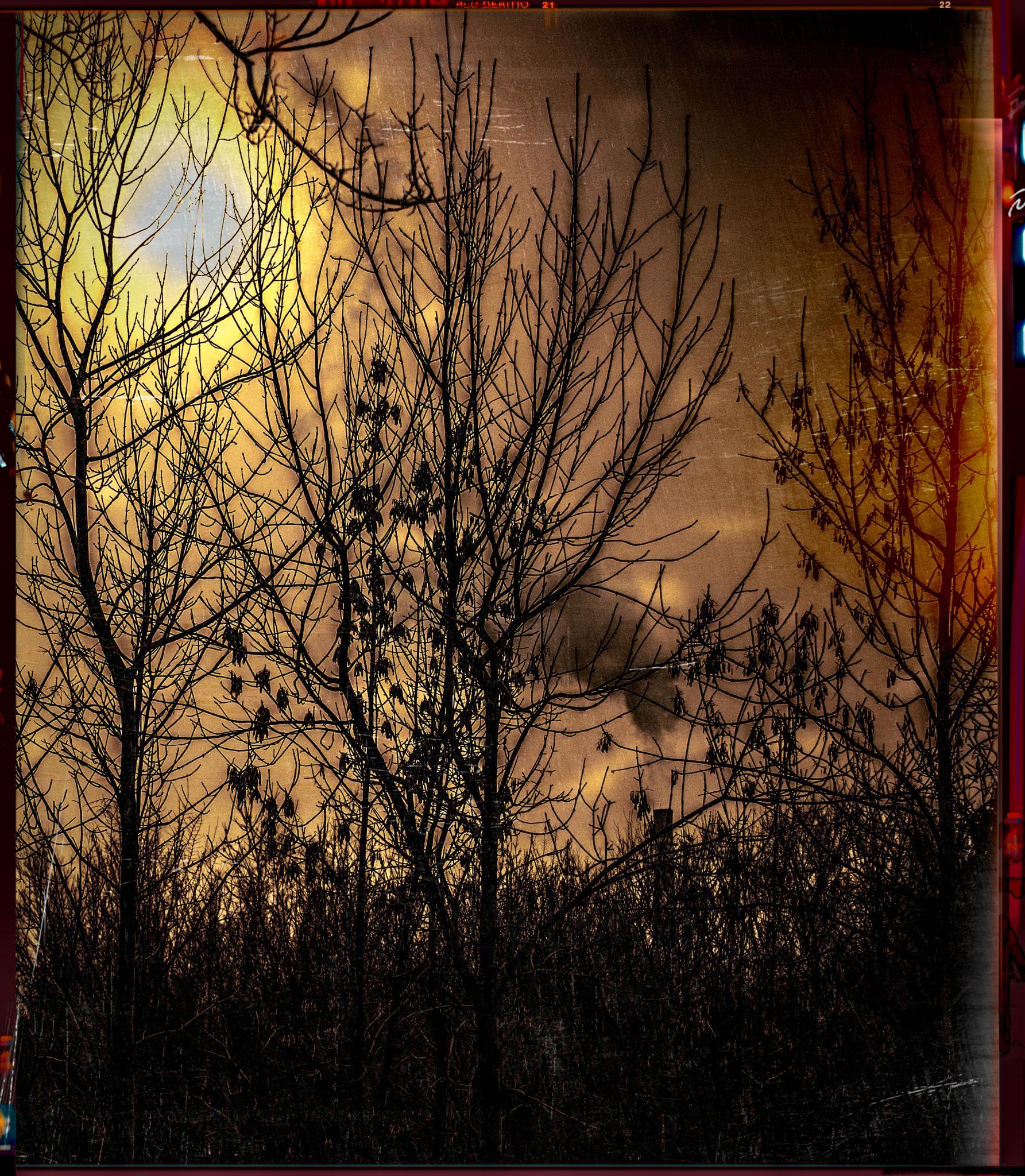The world's on fire ( Ukraine ) Anno Domini 2015 by yassen.botcharov