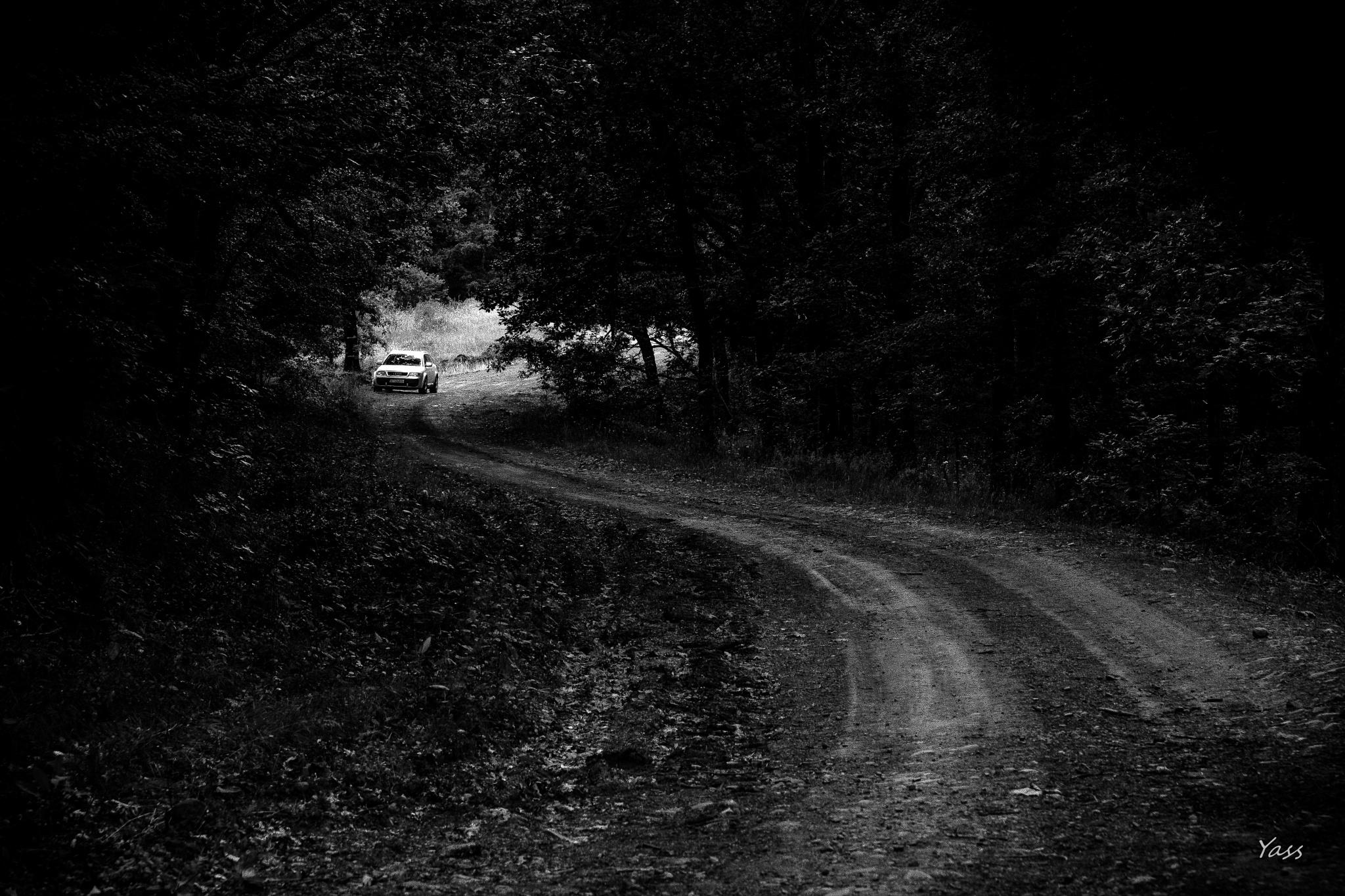 Country road by yassen.botcharov