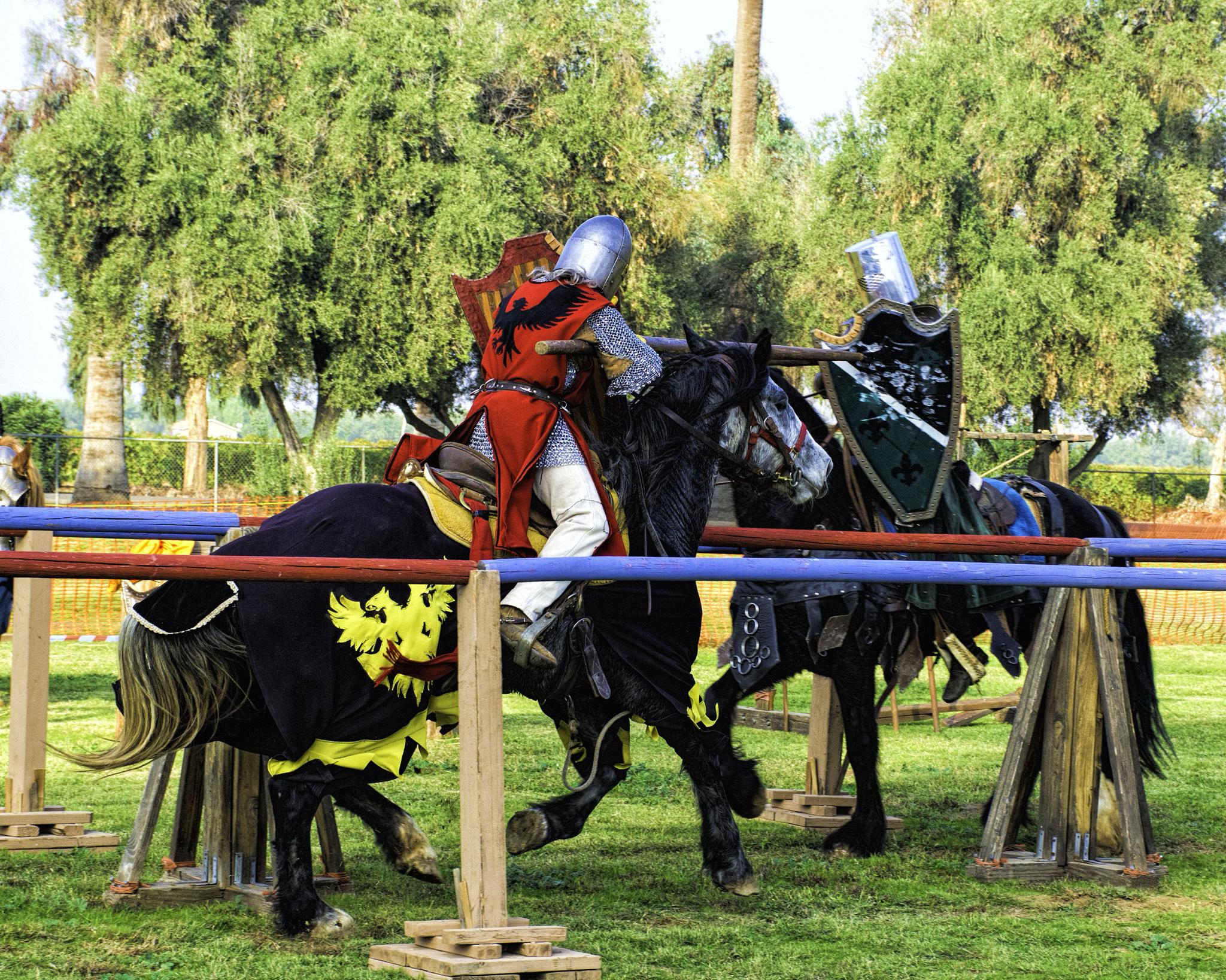 The Joust by steve jordan